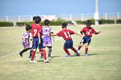 mini_soccer (262)