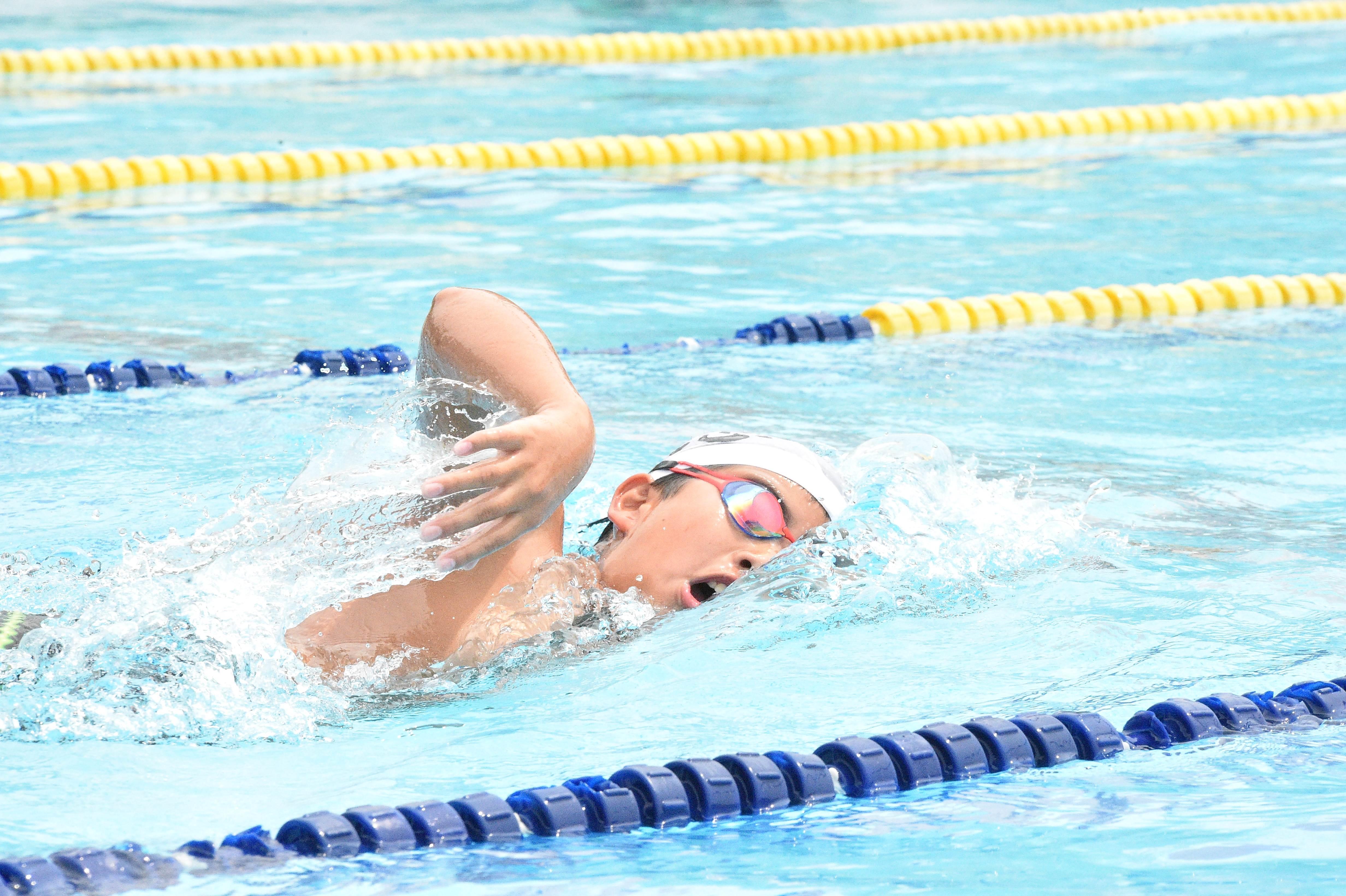 水泳 (29)