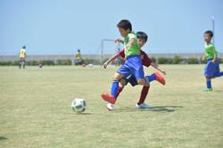 mini_soccer (458)