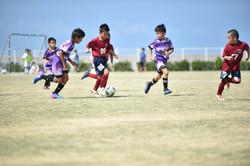 mini_soccer (302)