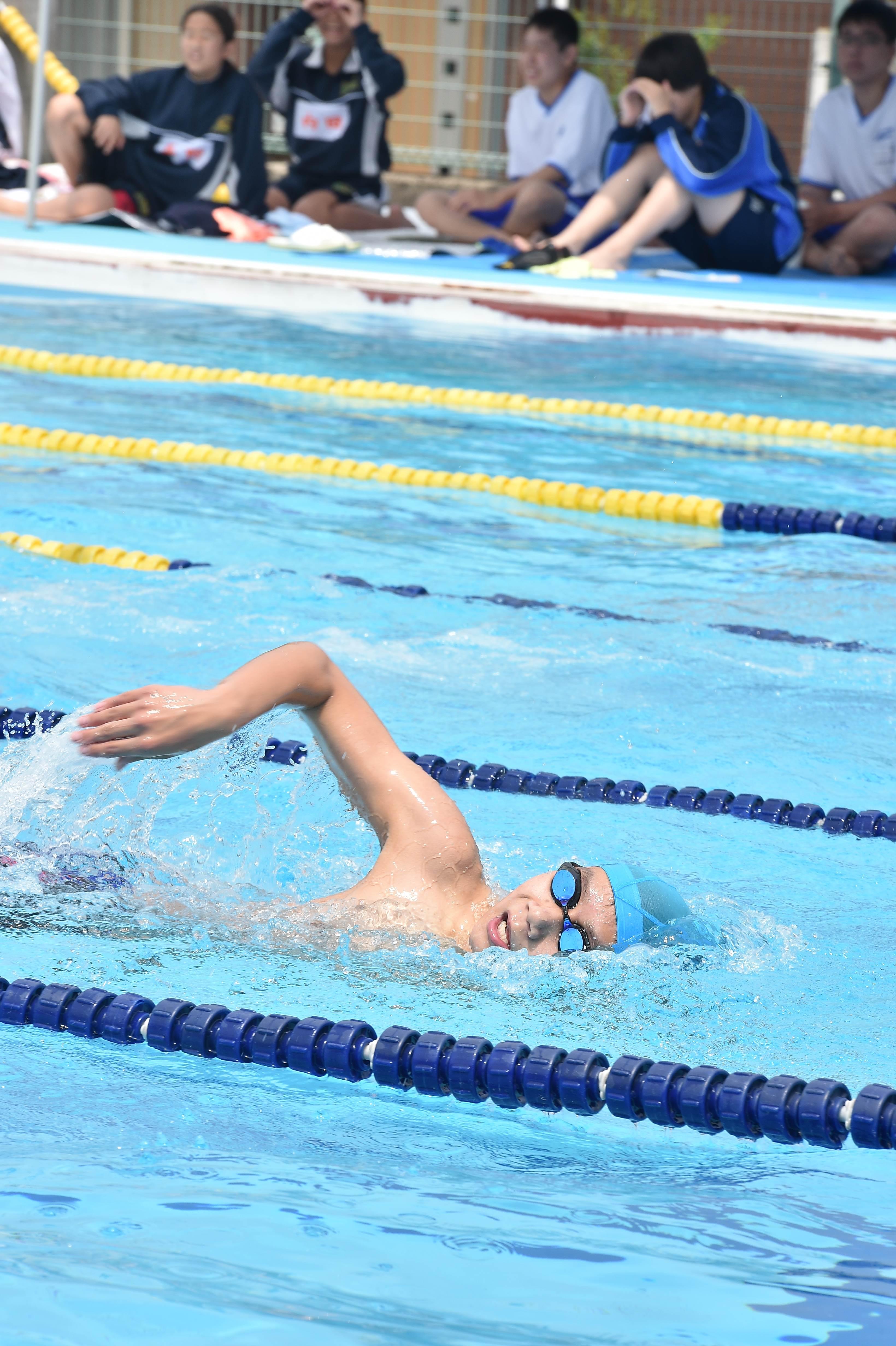 水泳 (20)