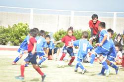 mini_soccer (541)