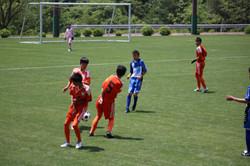 サッカー (373)