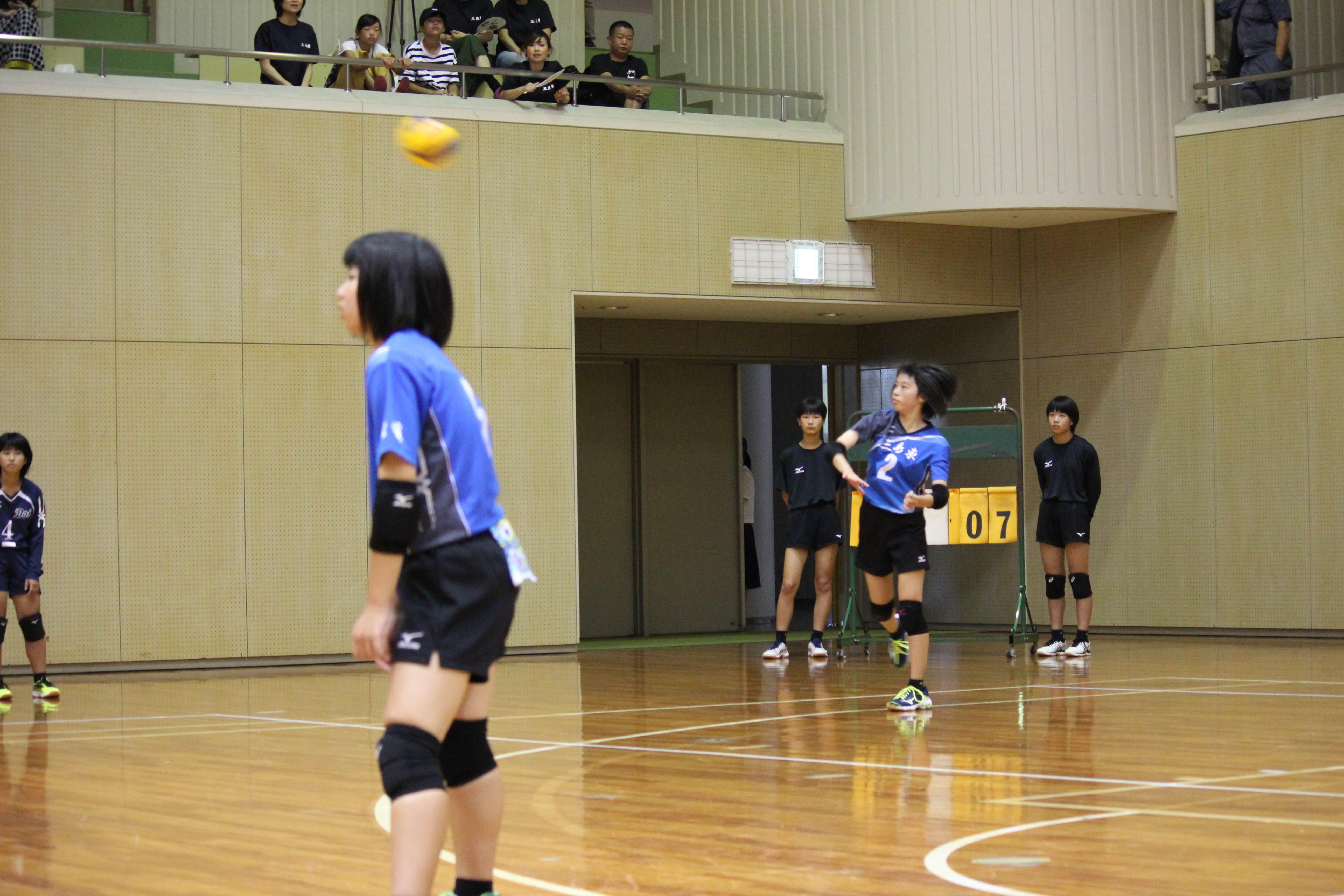 バレーボール (88)