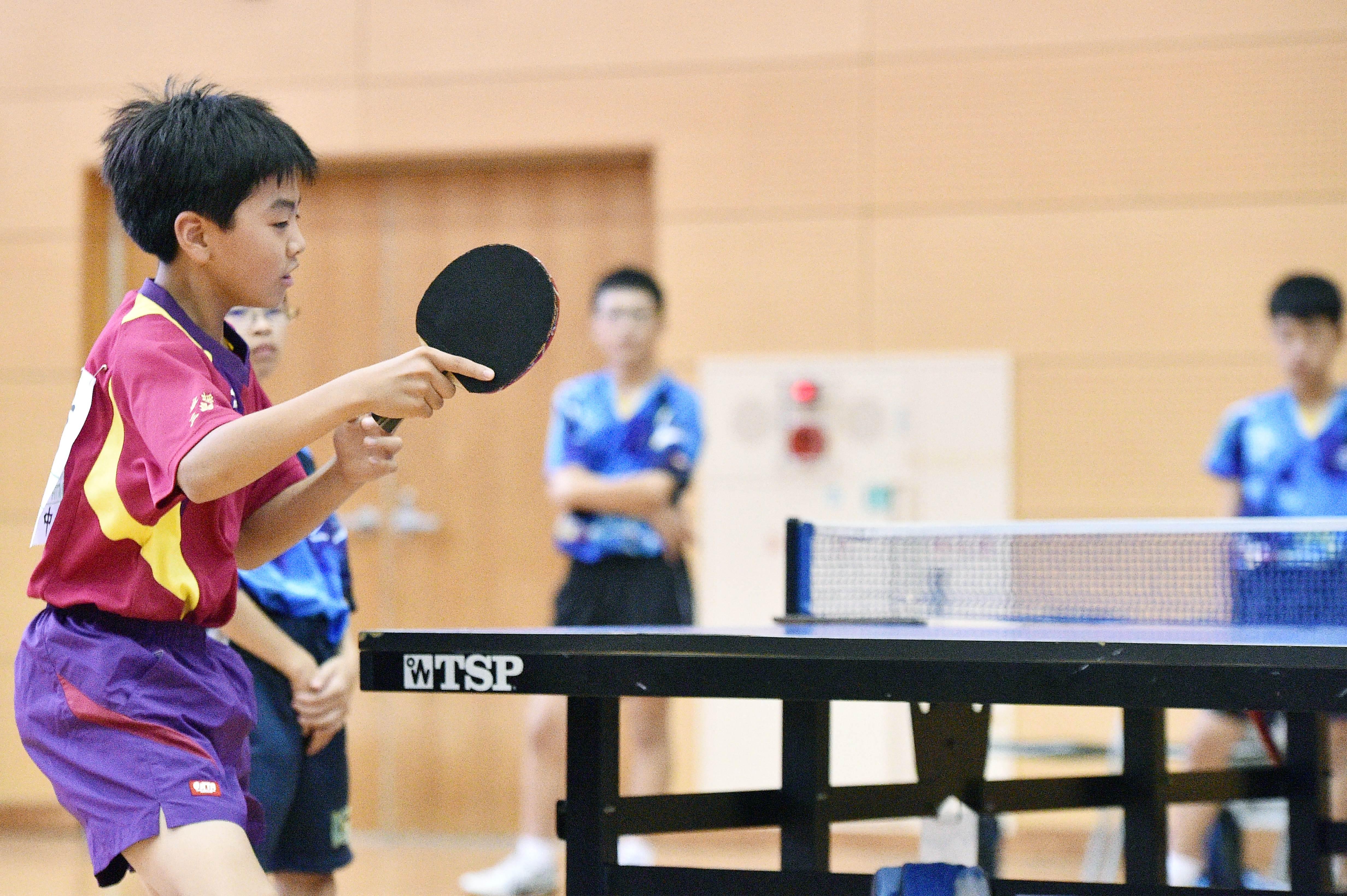 table_tennis (3)