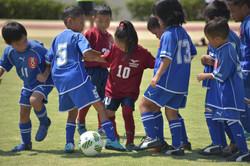 mini_soccer (684)