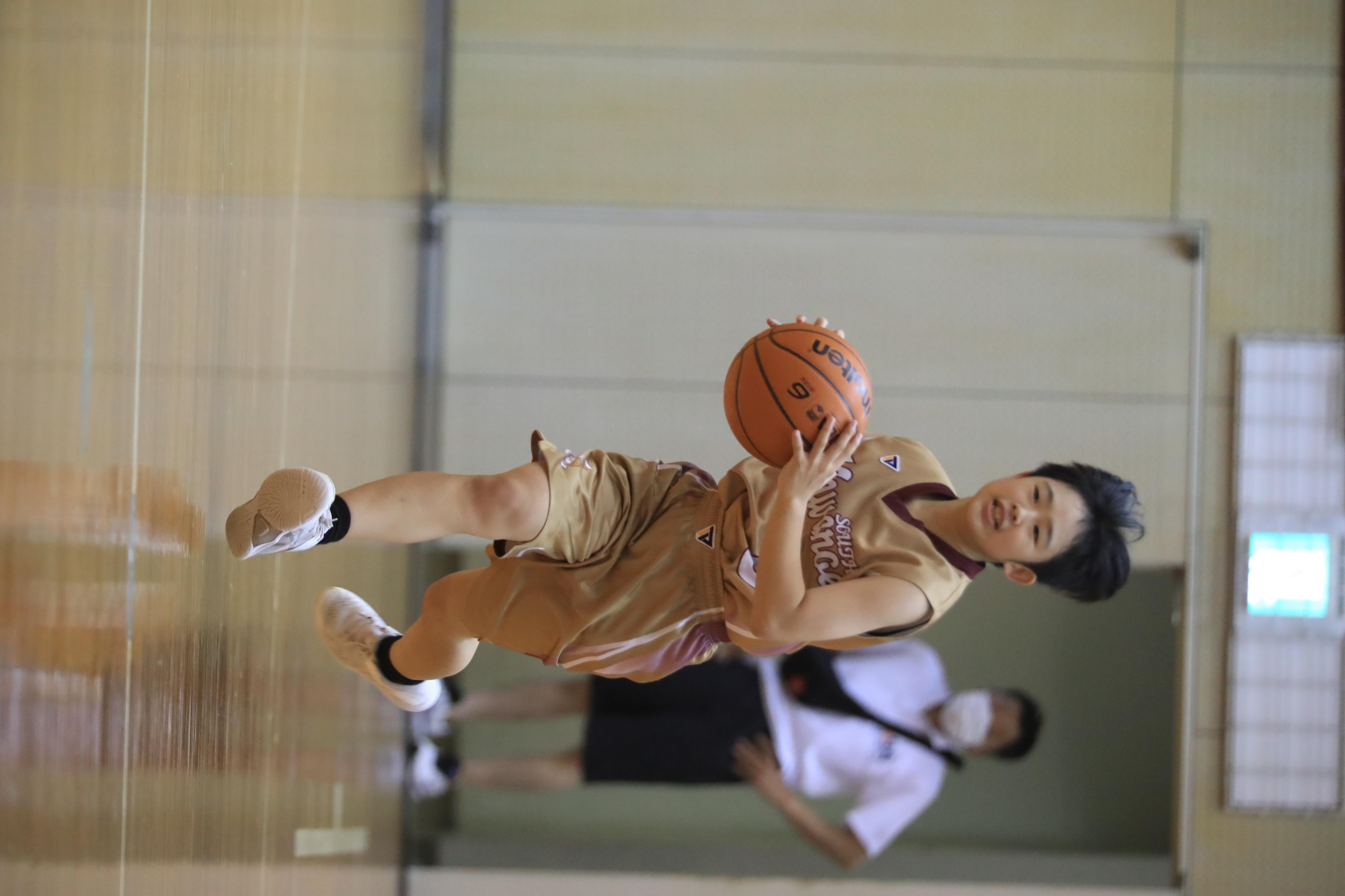 バスケット (349)