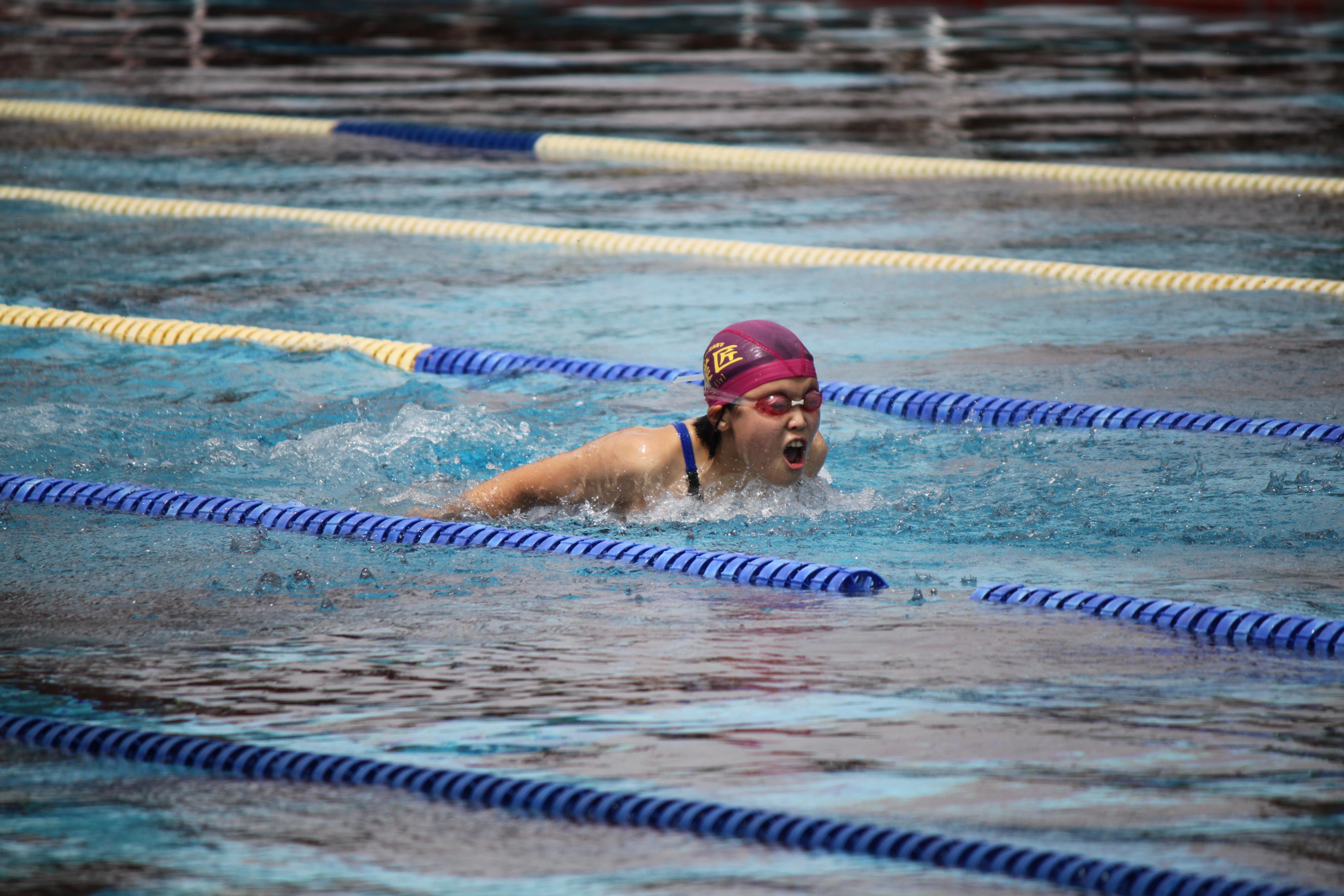 水泳競技 (46)