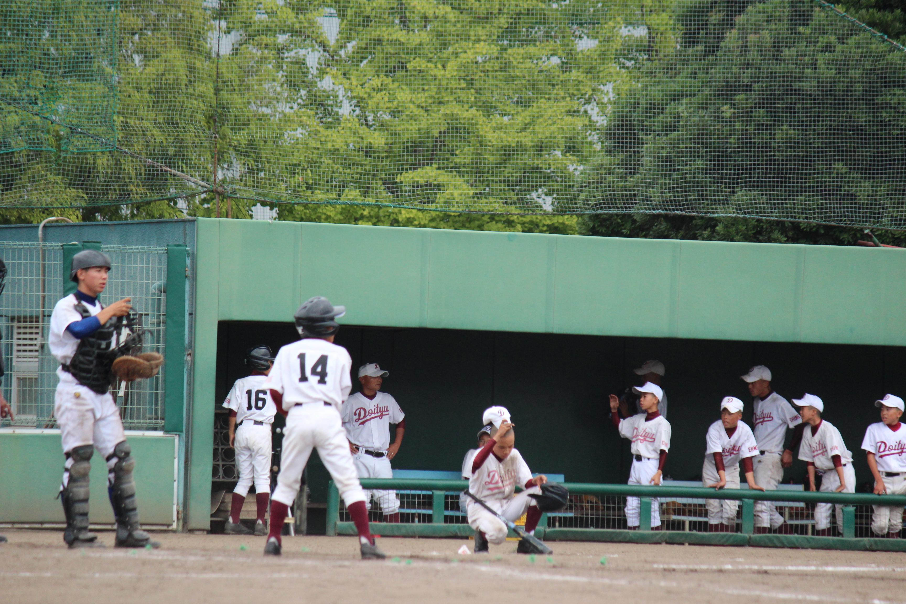 野球 (281)