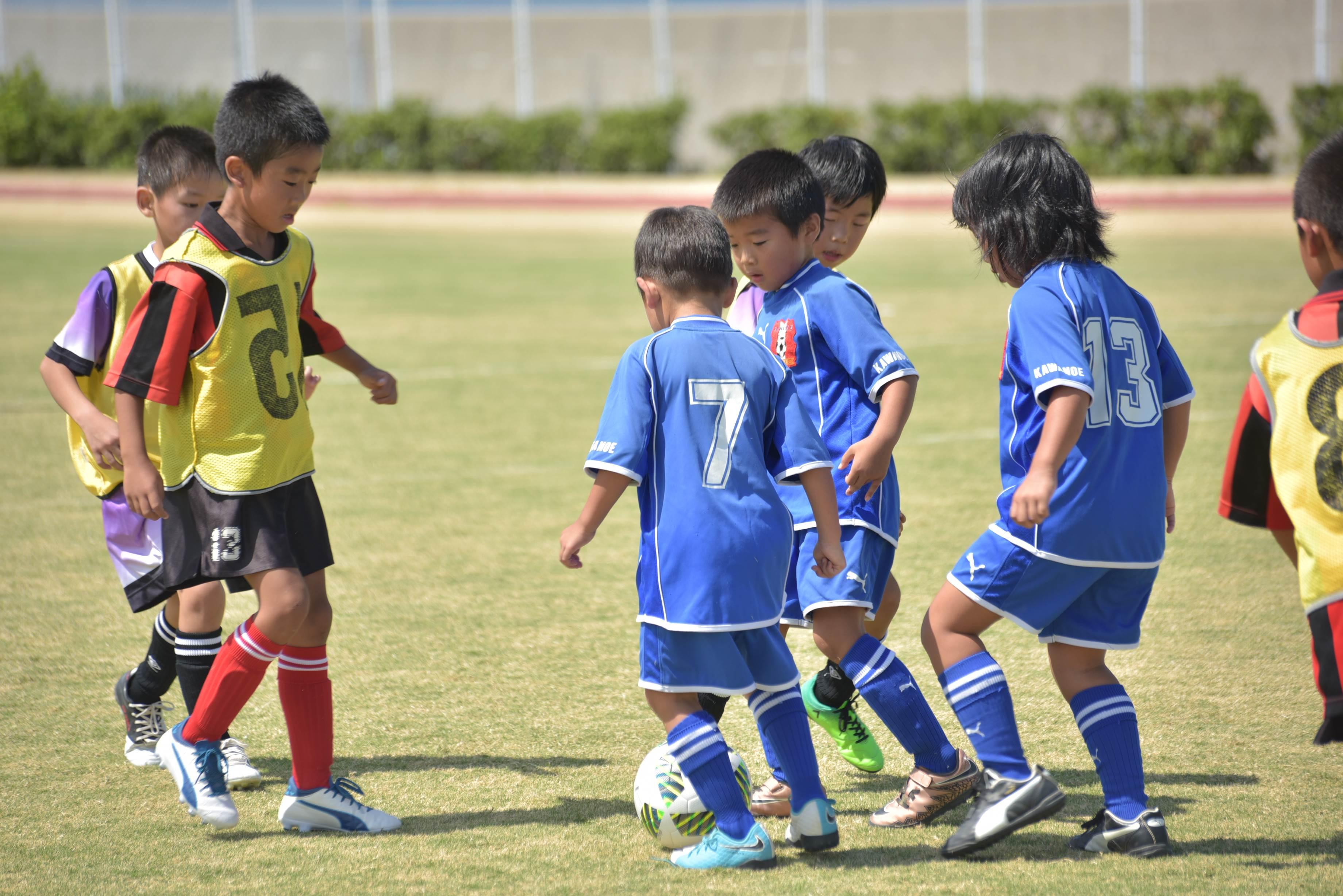 mini_soccer (647)