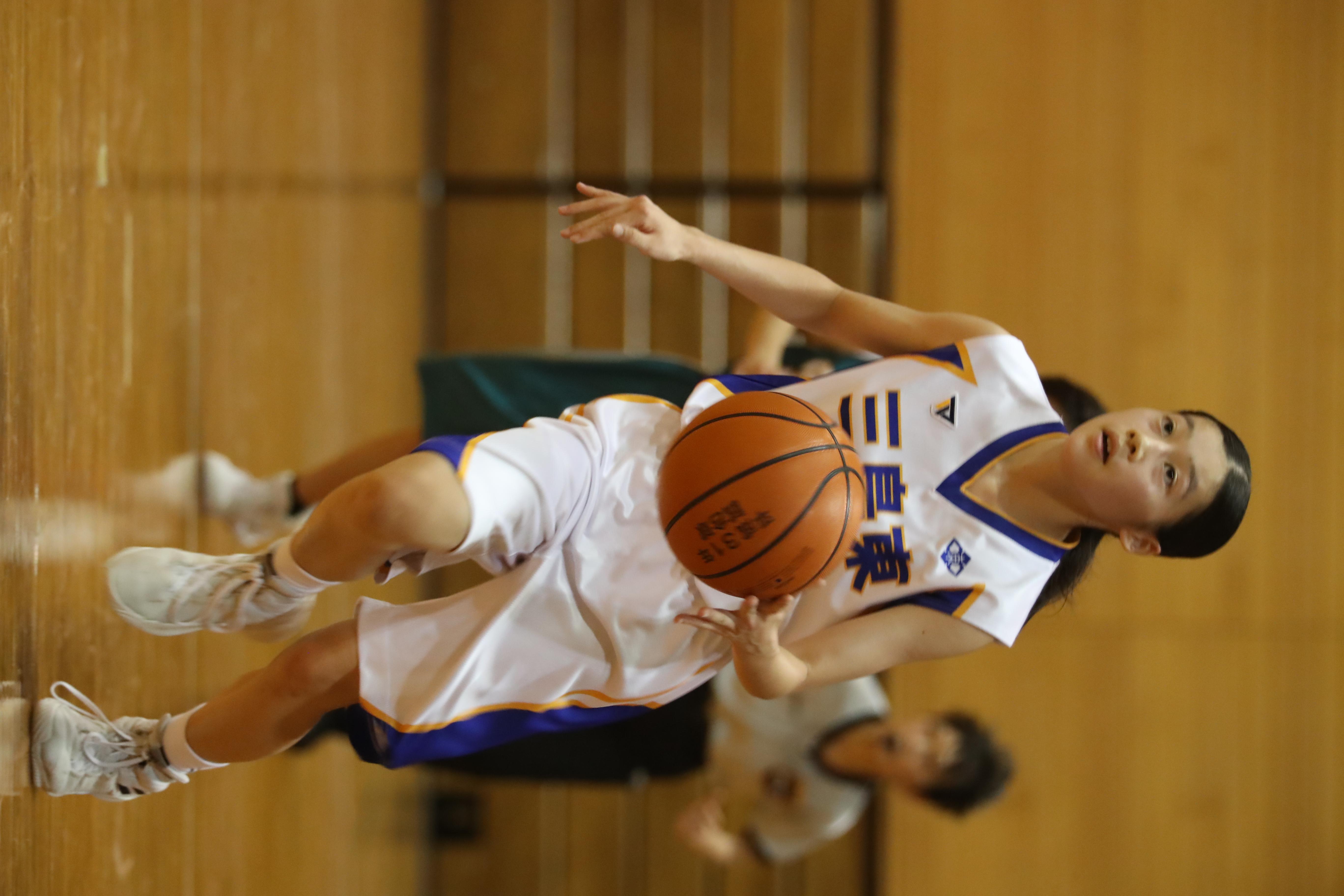バスケット (297)