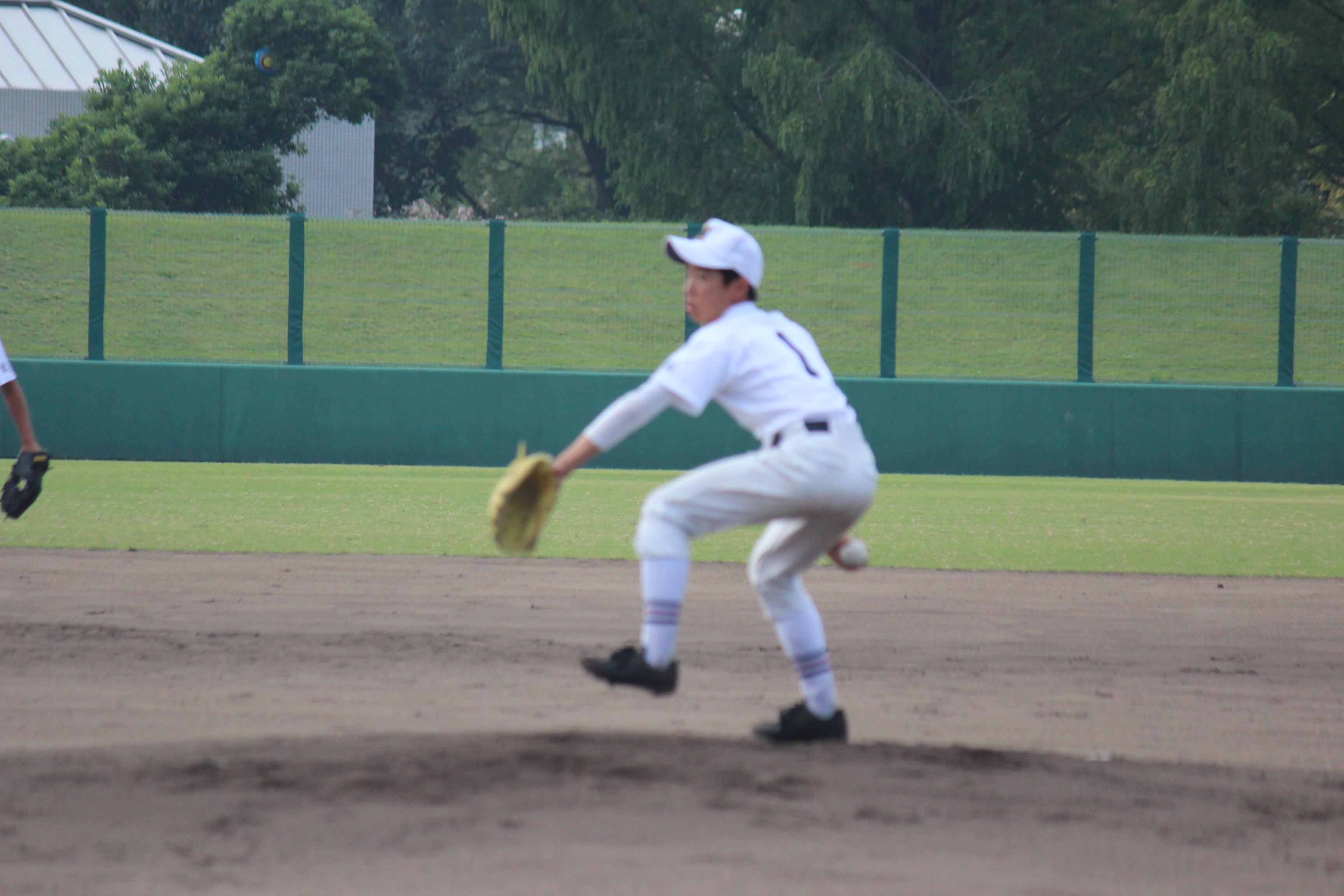 野球 (354)