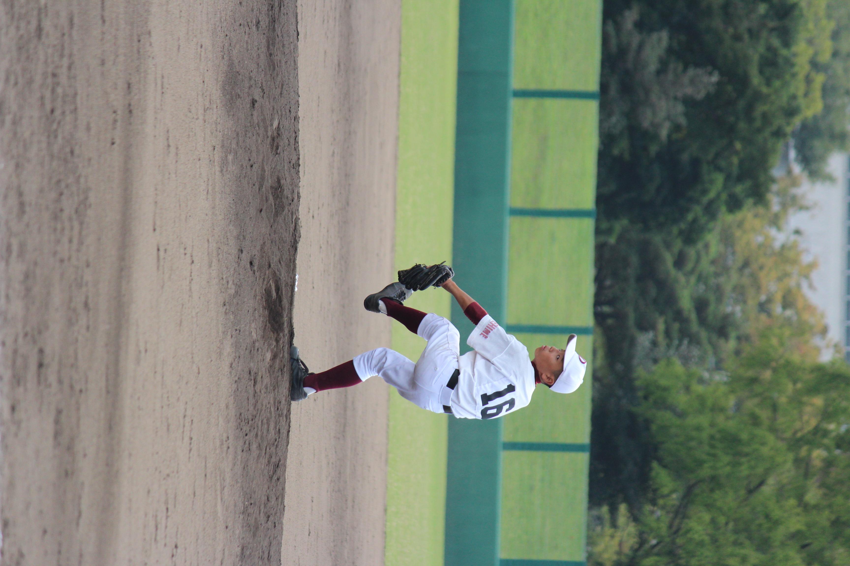 野球 (883)