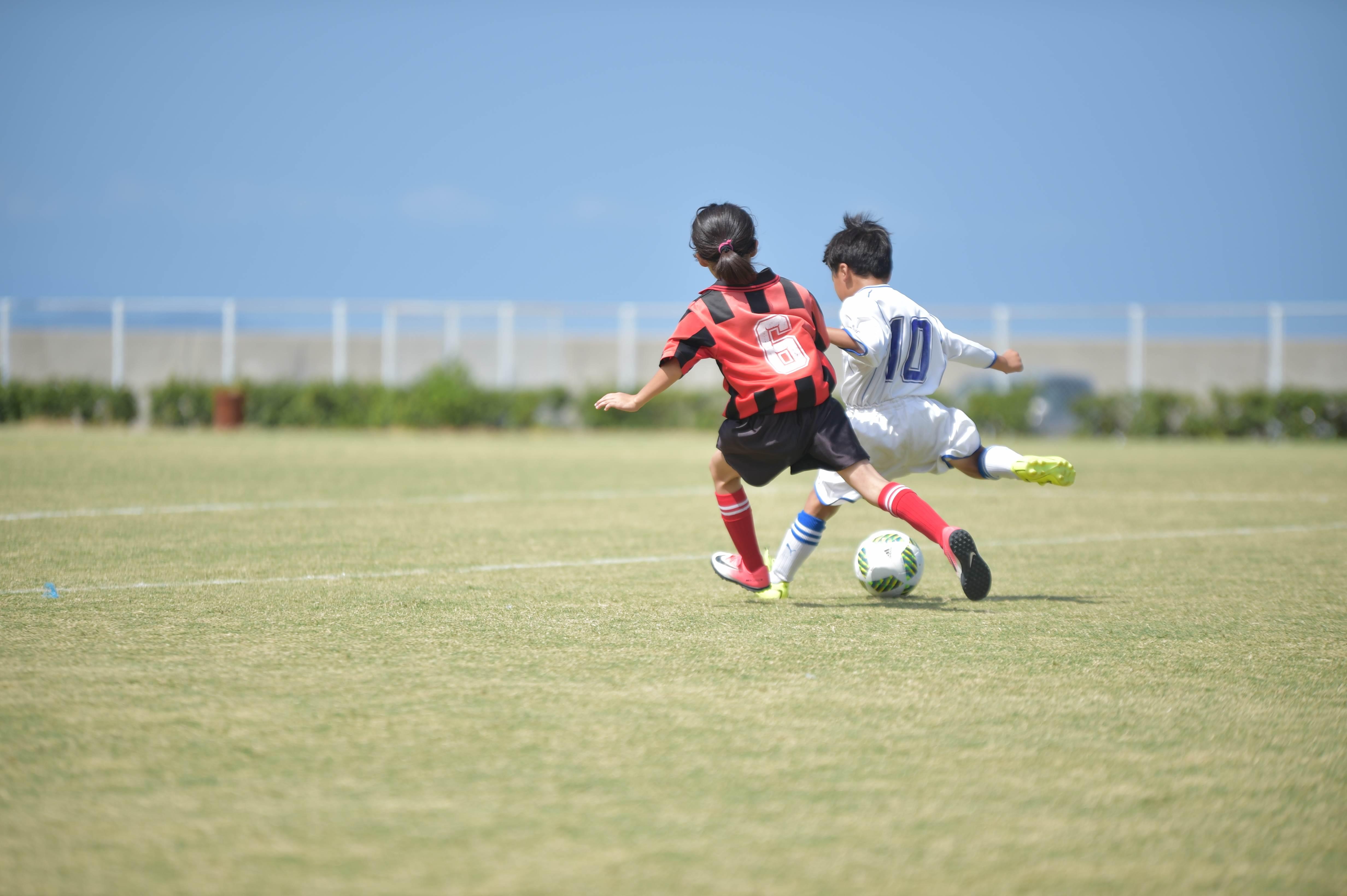 mini_soccer (320)