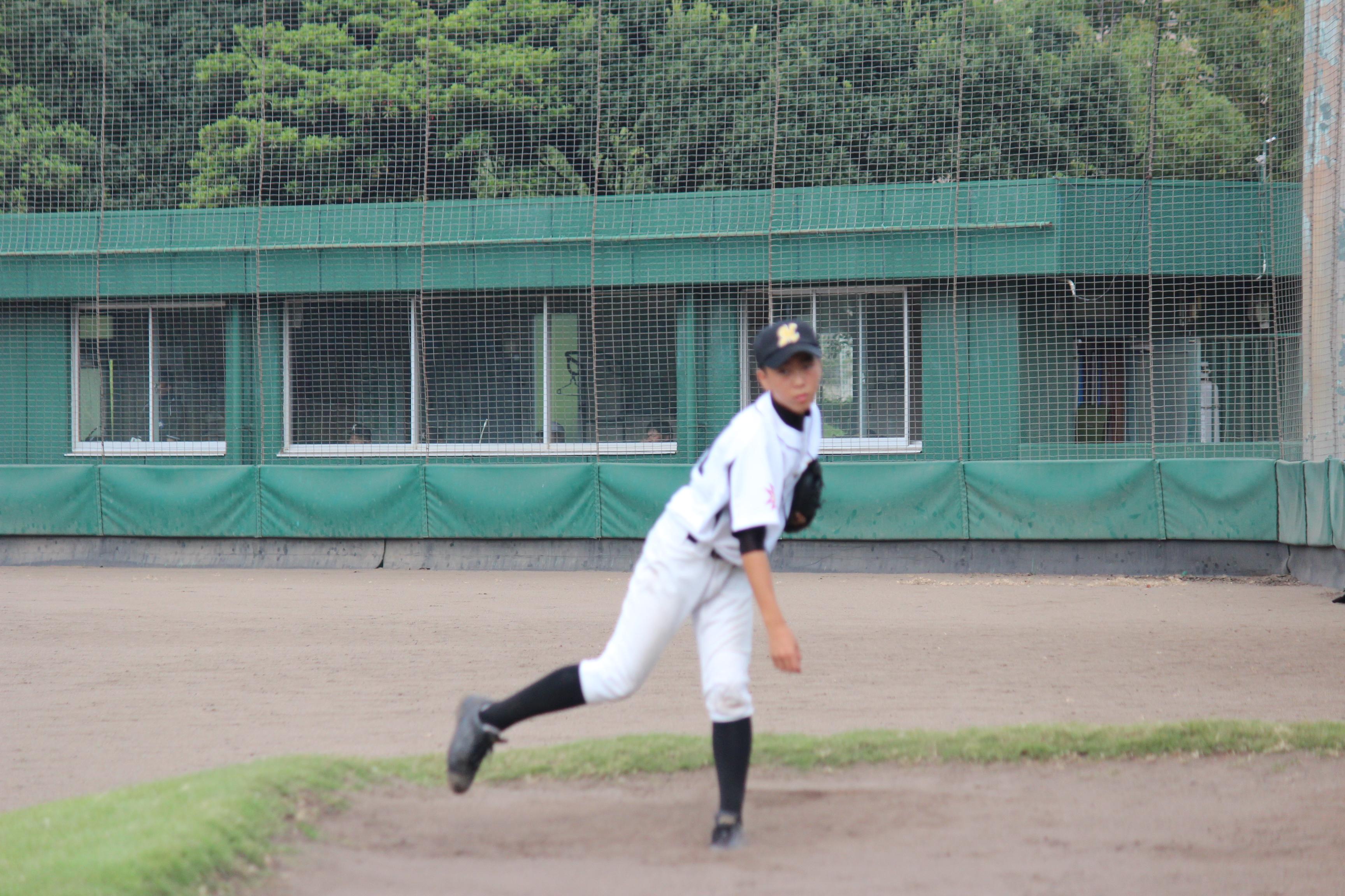 野球 (482)