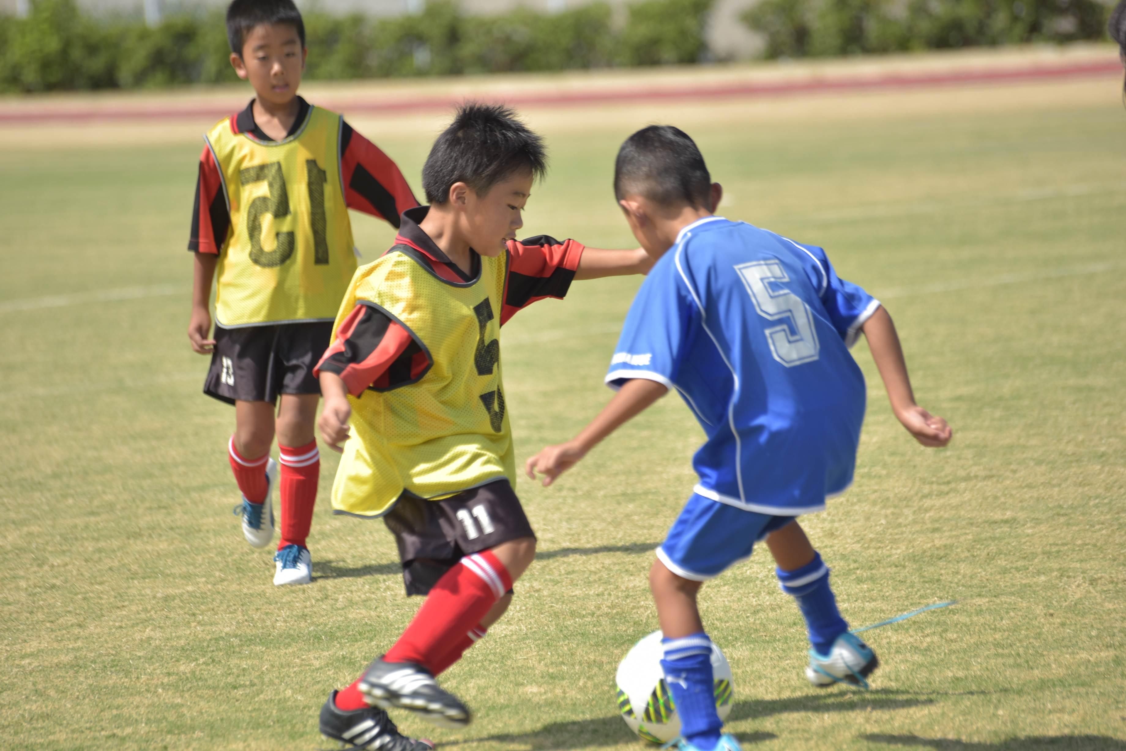 mini_soccer (629)