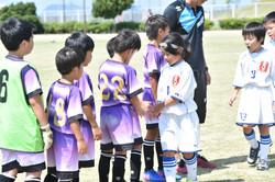 mini_soccer (529)