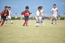 mini_soccer (334)