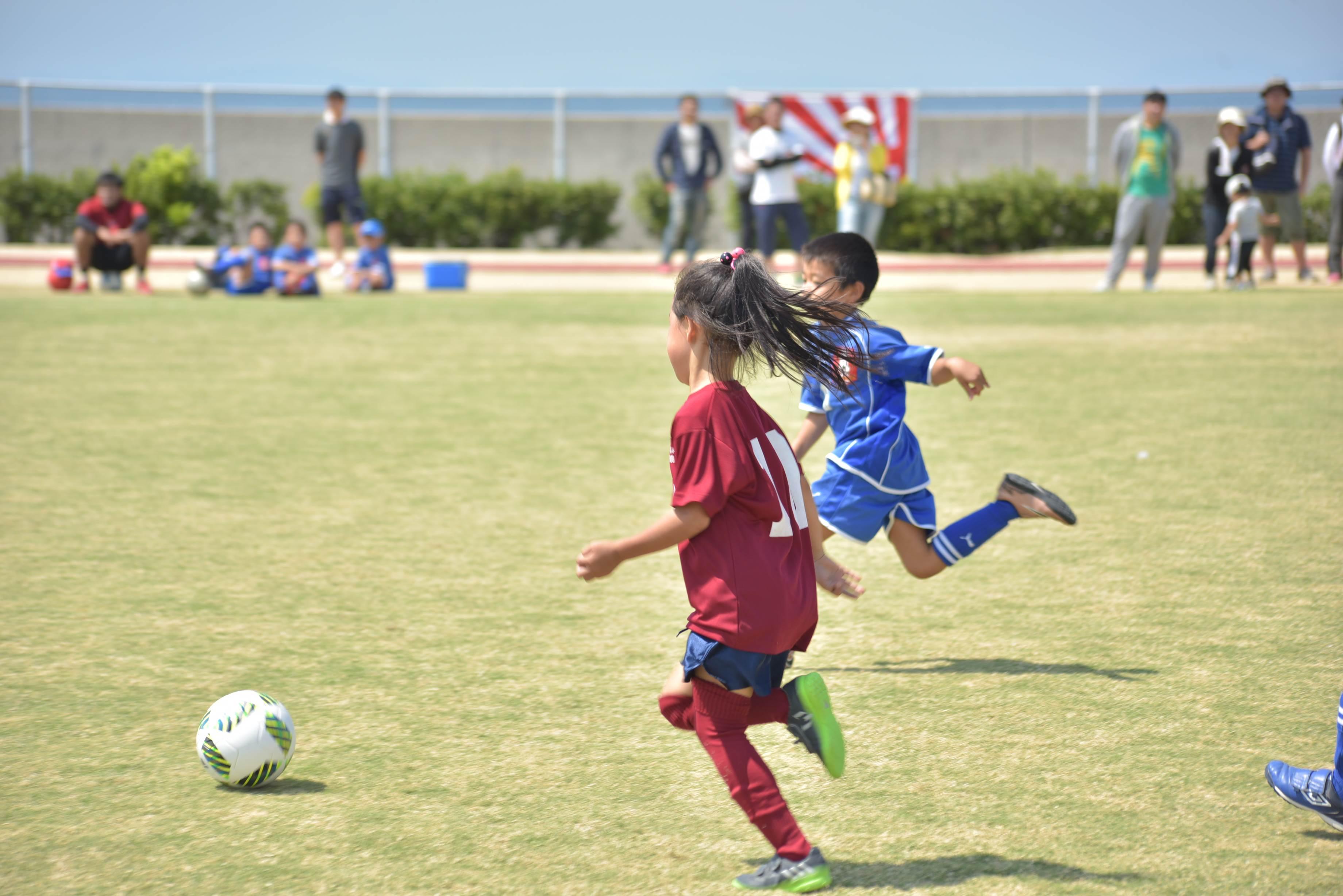 mini_soccer (677)