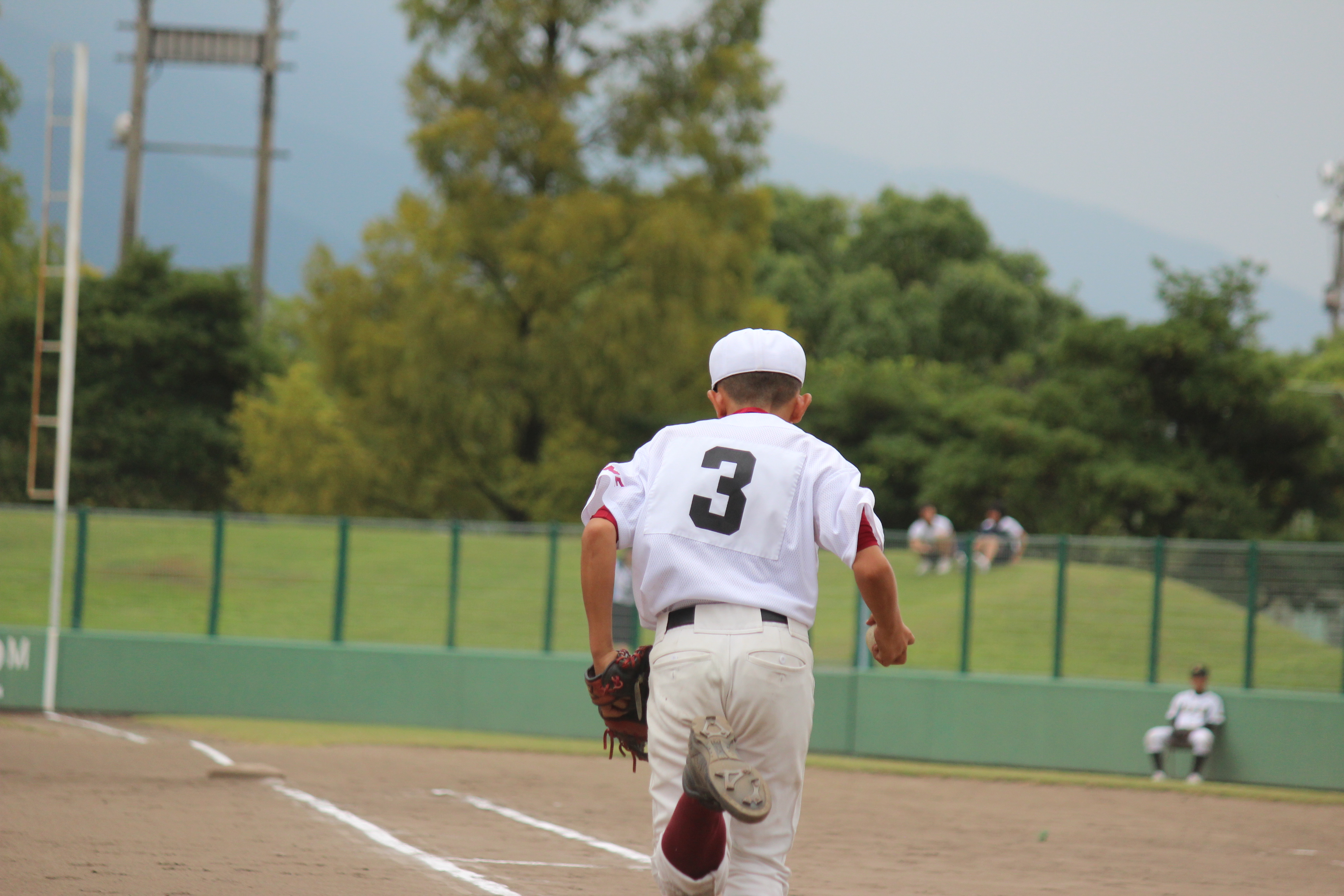 野球 (202)