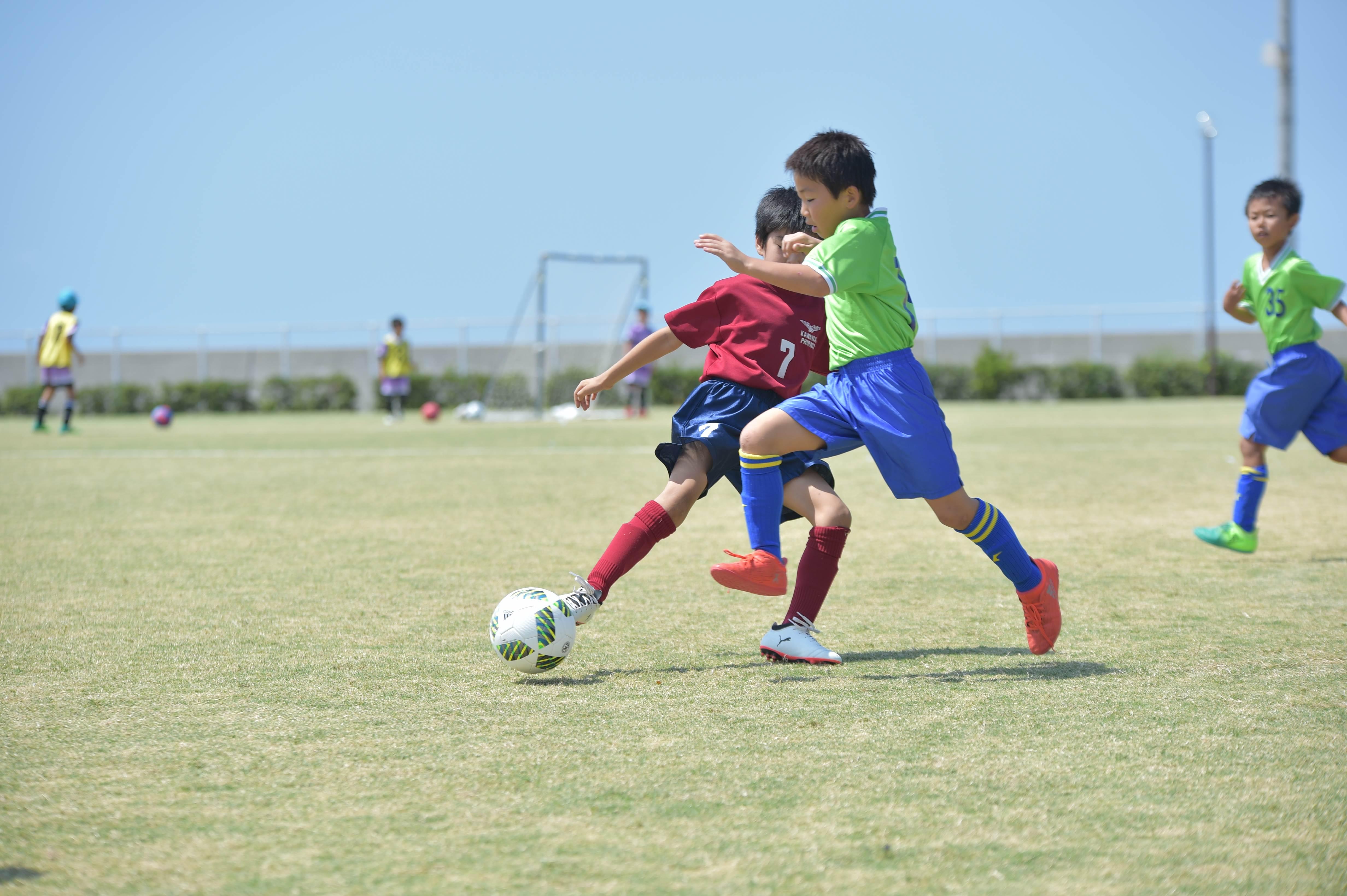 mini_soccer (457)
