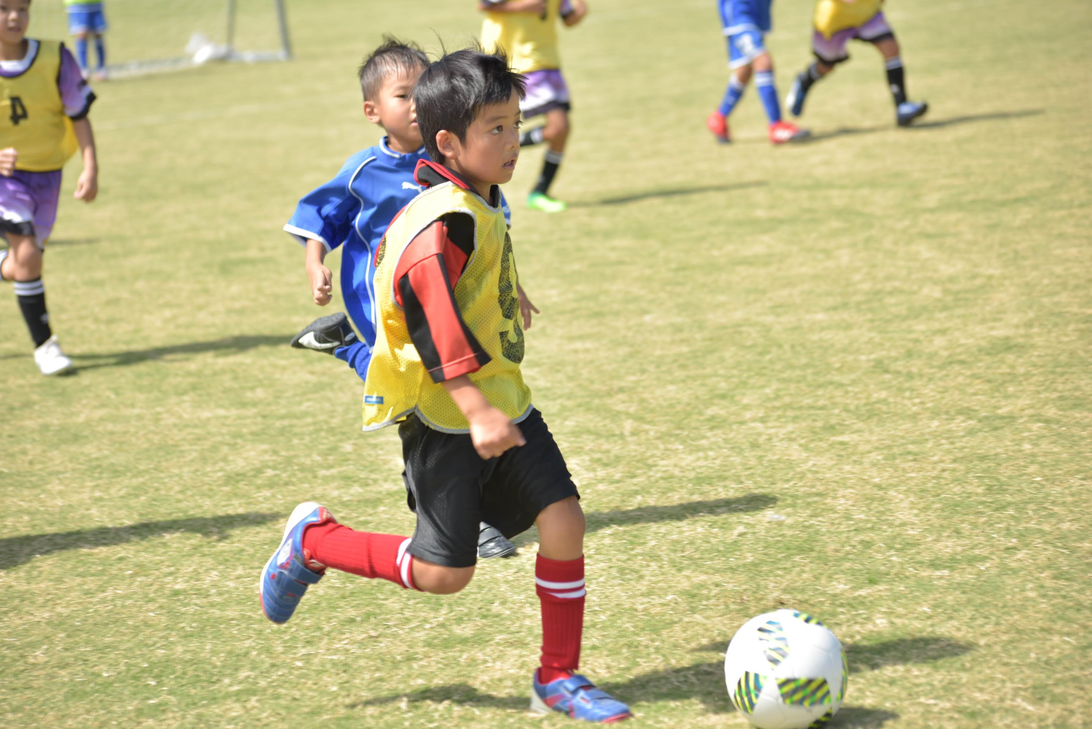 mini_soccer (618)