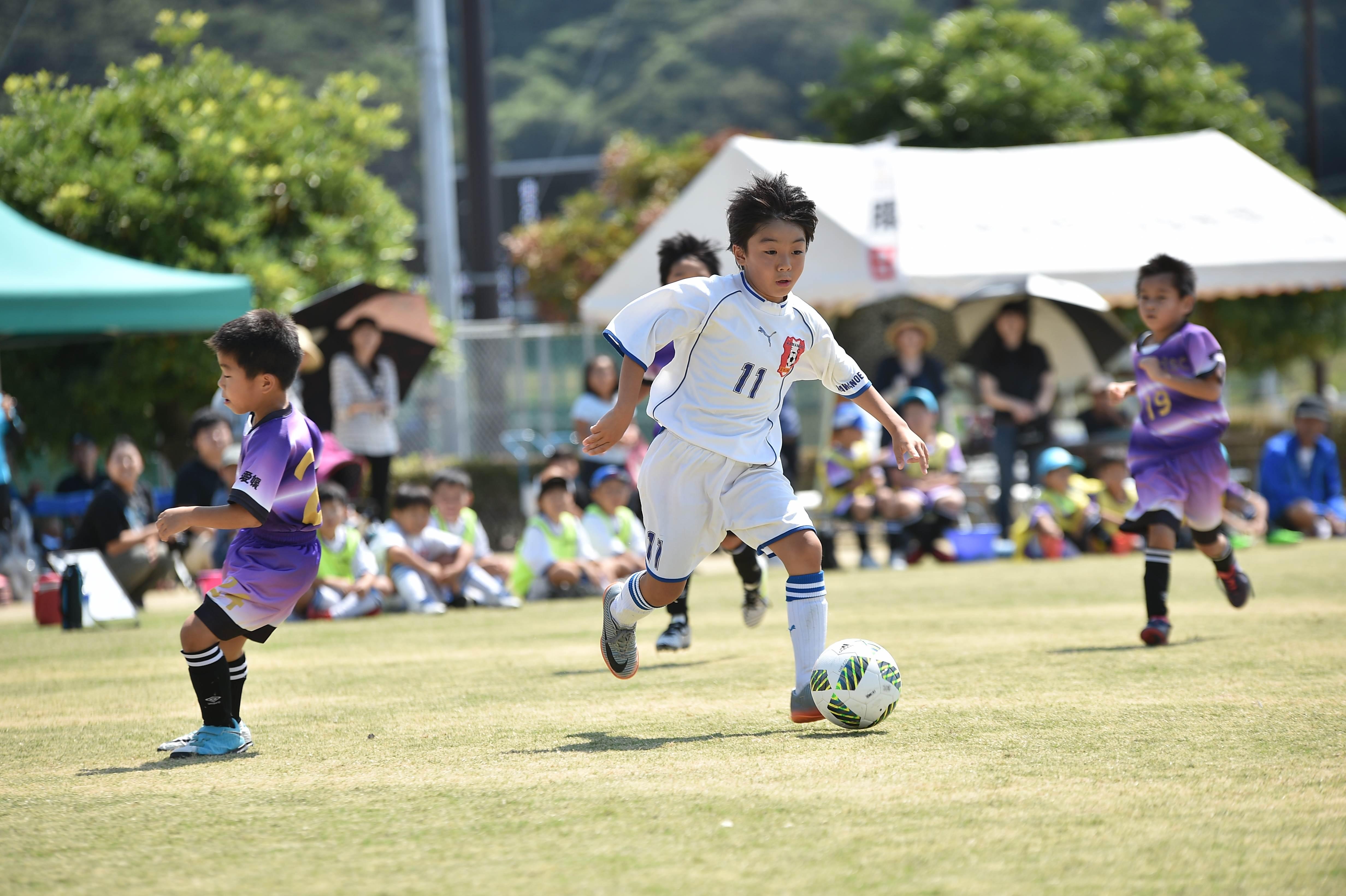 mini_soccer (495)