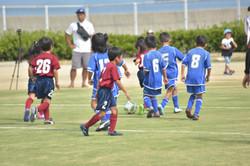 mini_soccer (570)