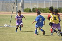 mini_soccer (626)