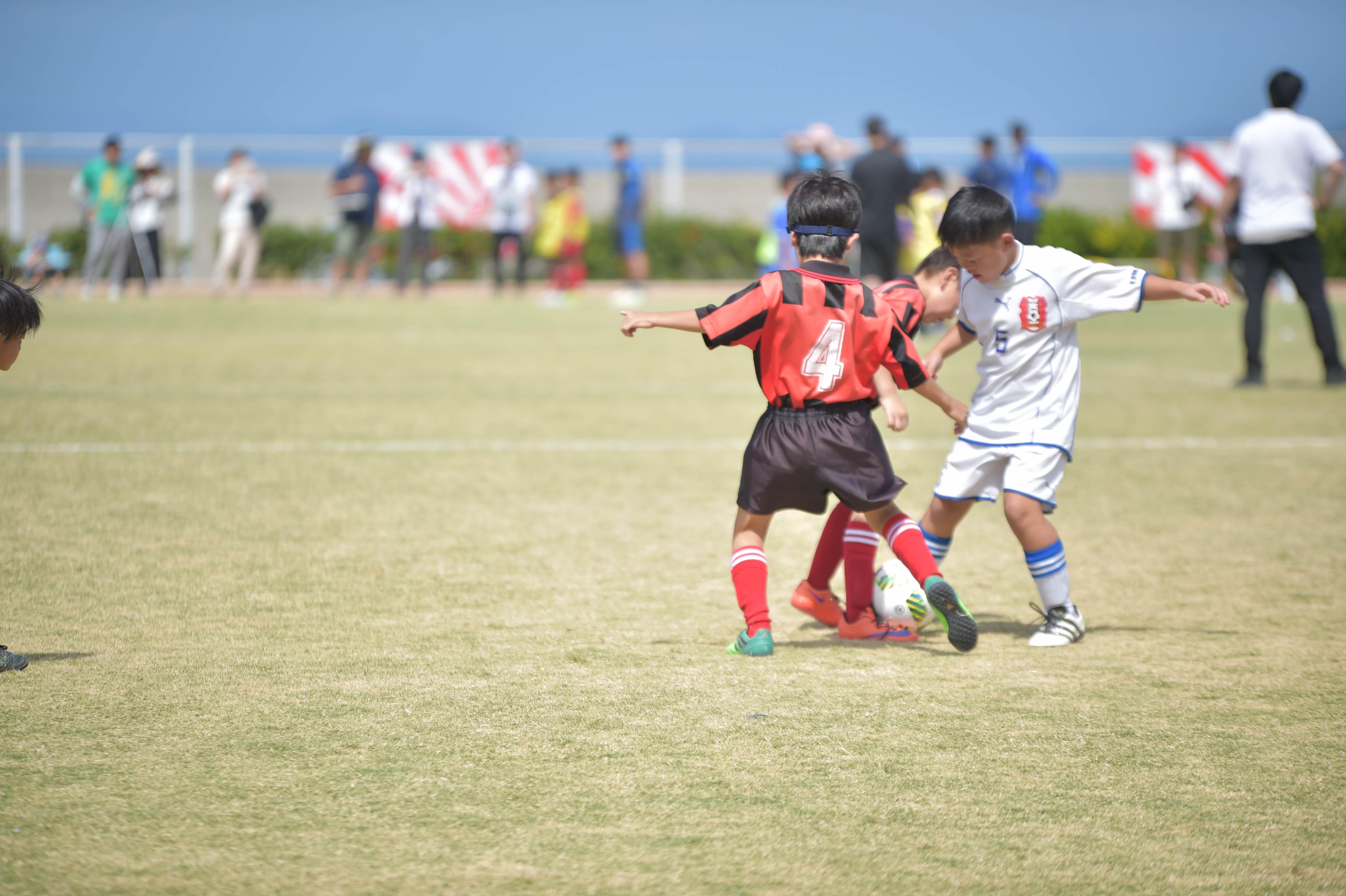 mini_soccer (305)