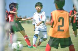mini_soccer (371)