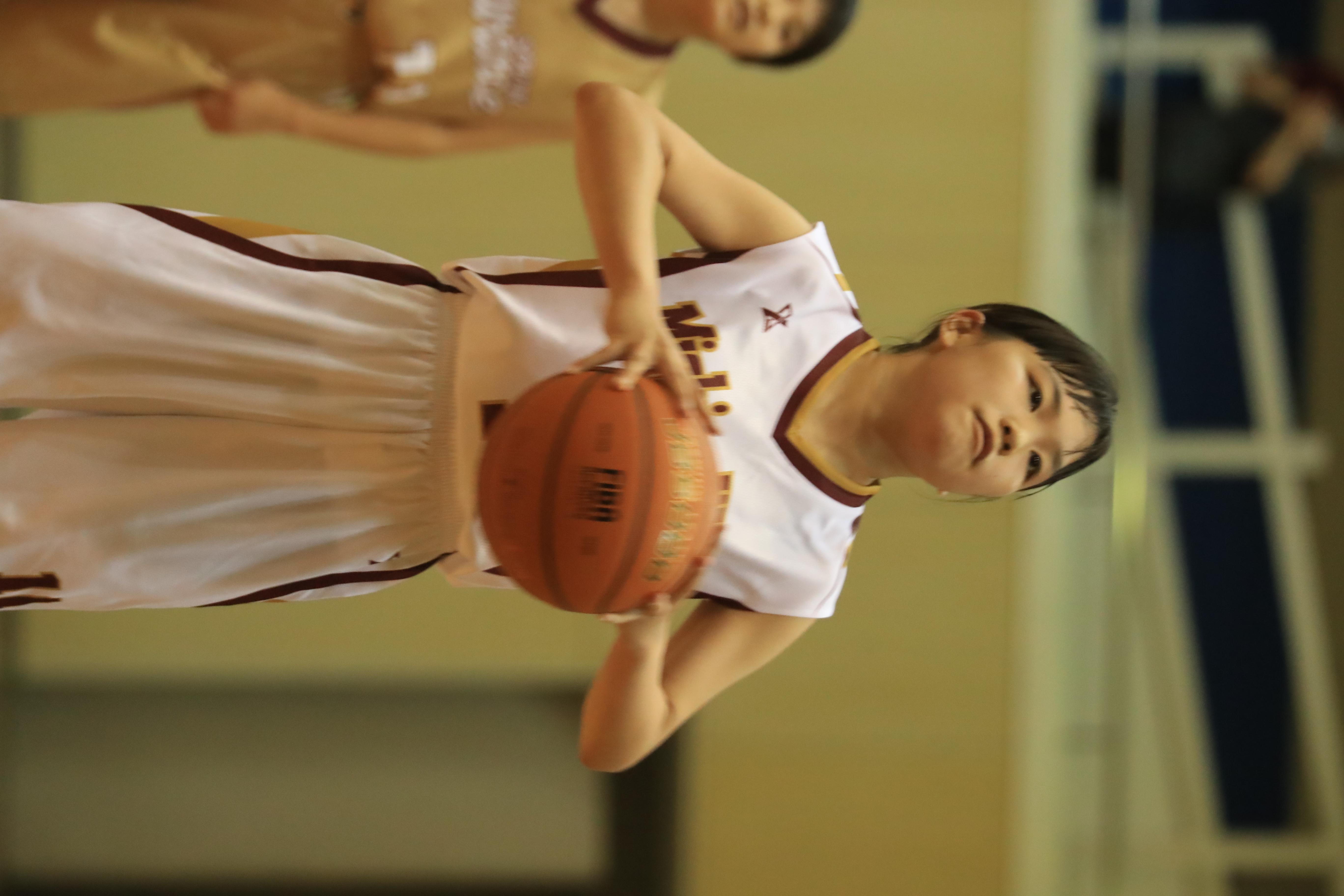 バスケット (1010)