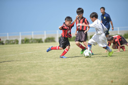 mini_soccer (337)