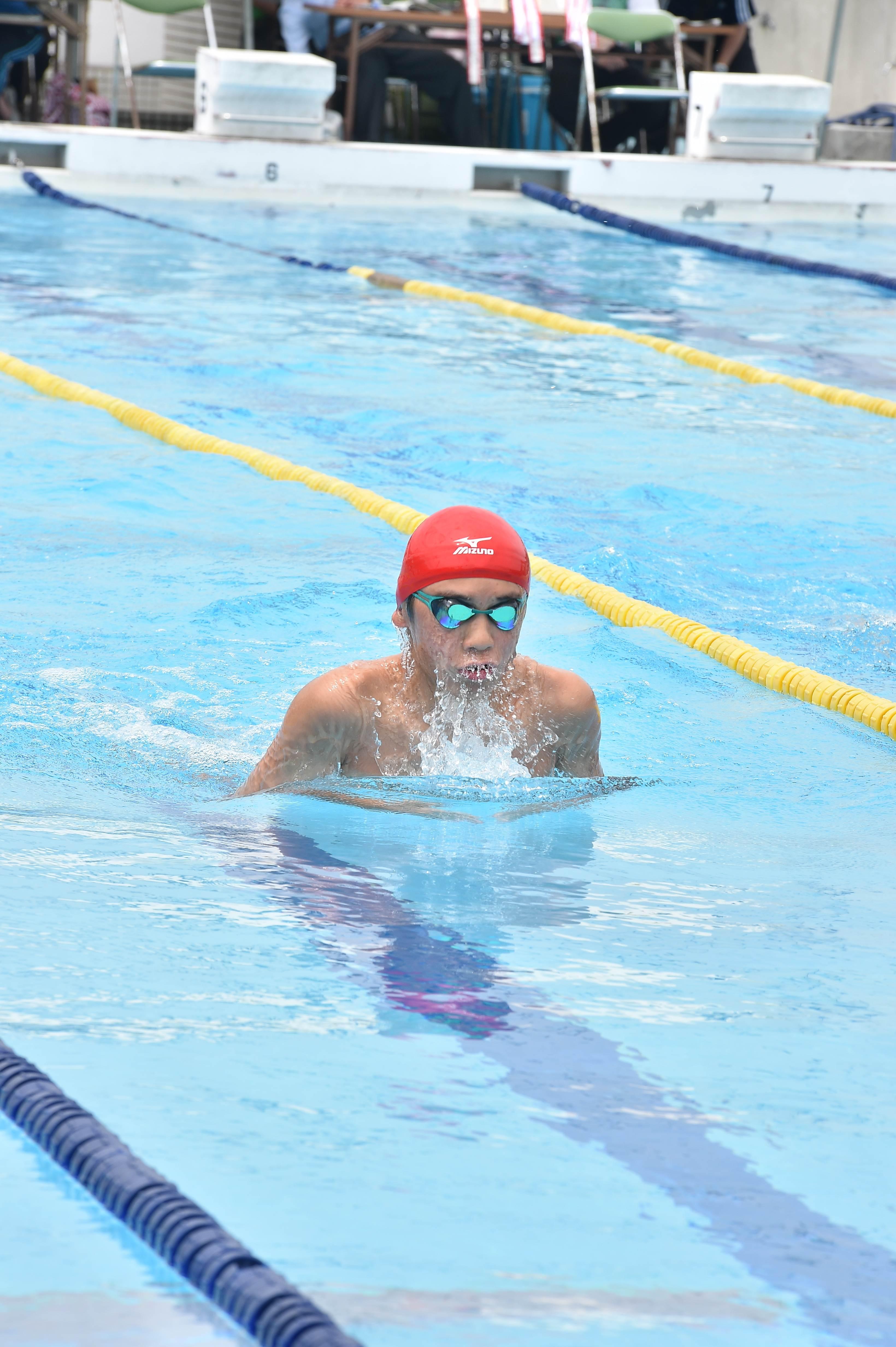 水泳 (51)