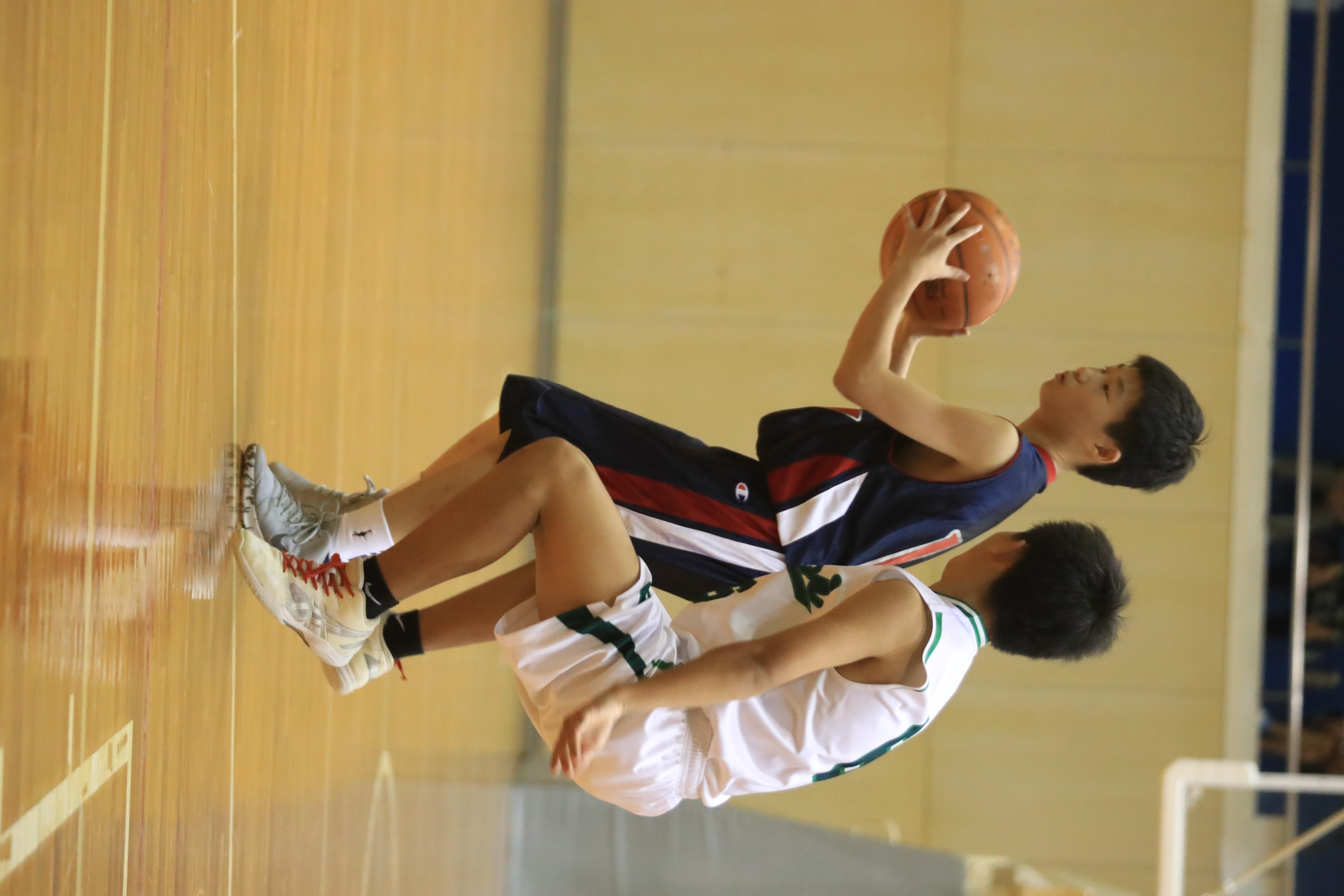 バスケット (916)