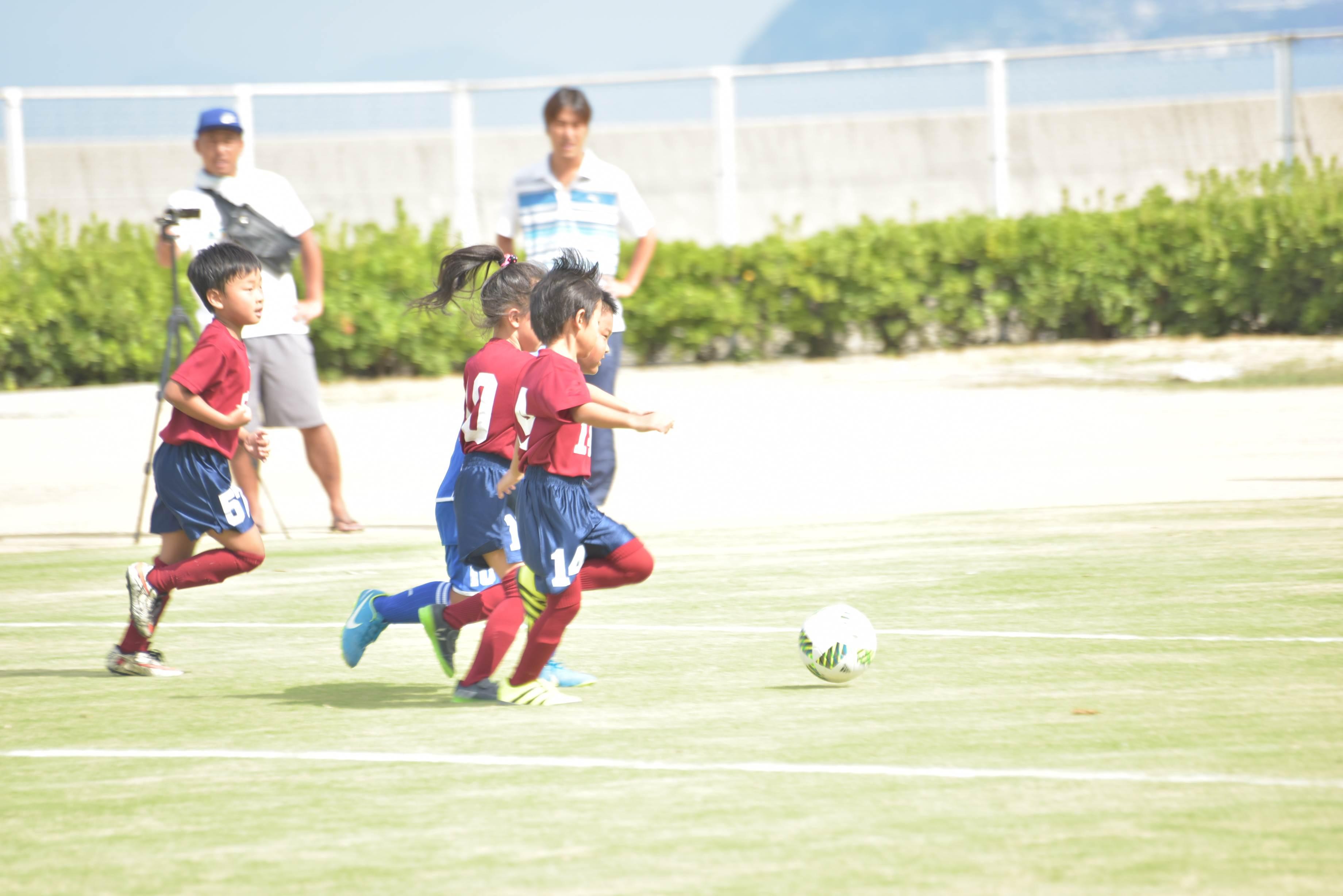 mini_soccer (548)