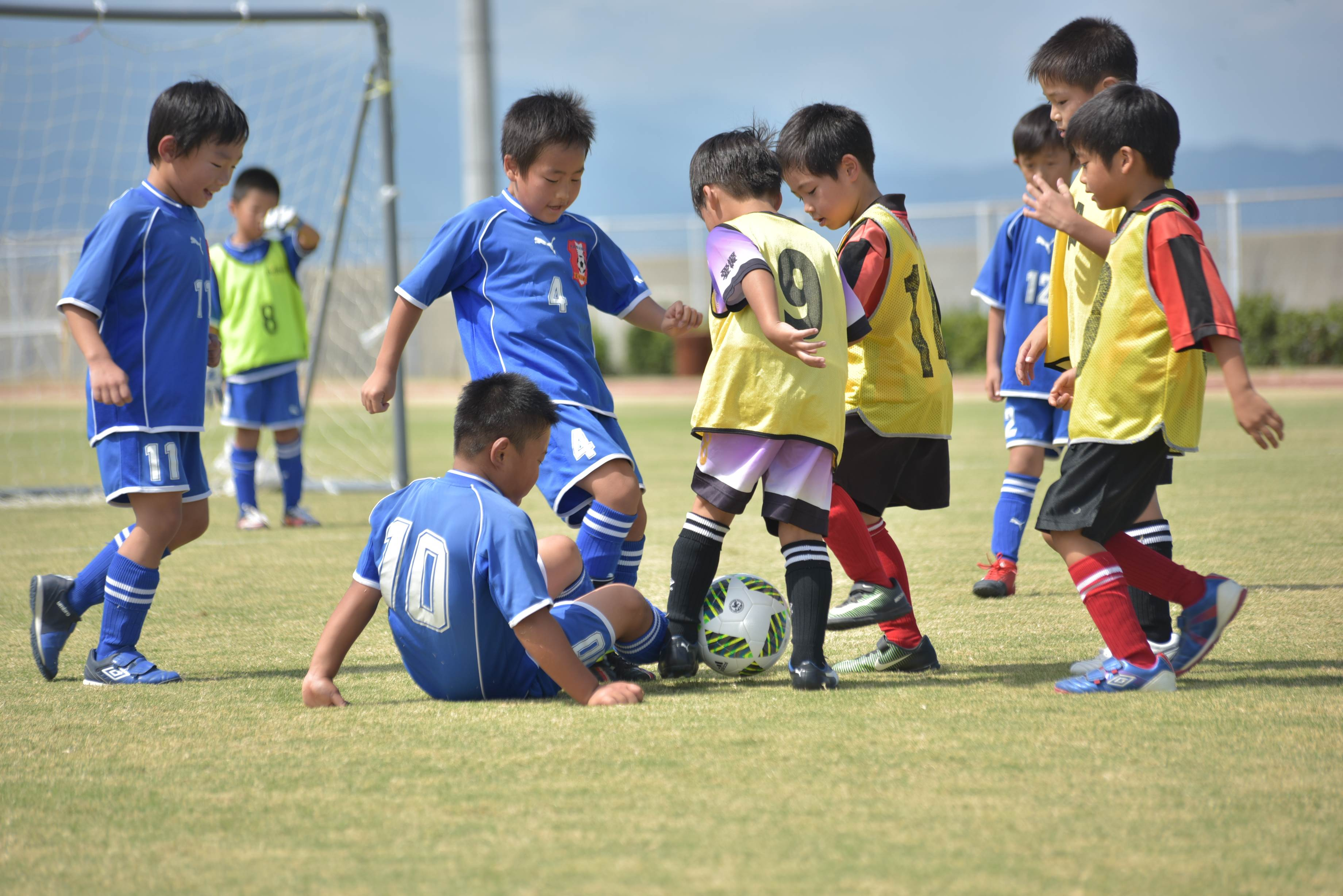 mini_soccer (623)