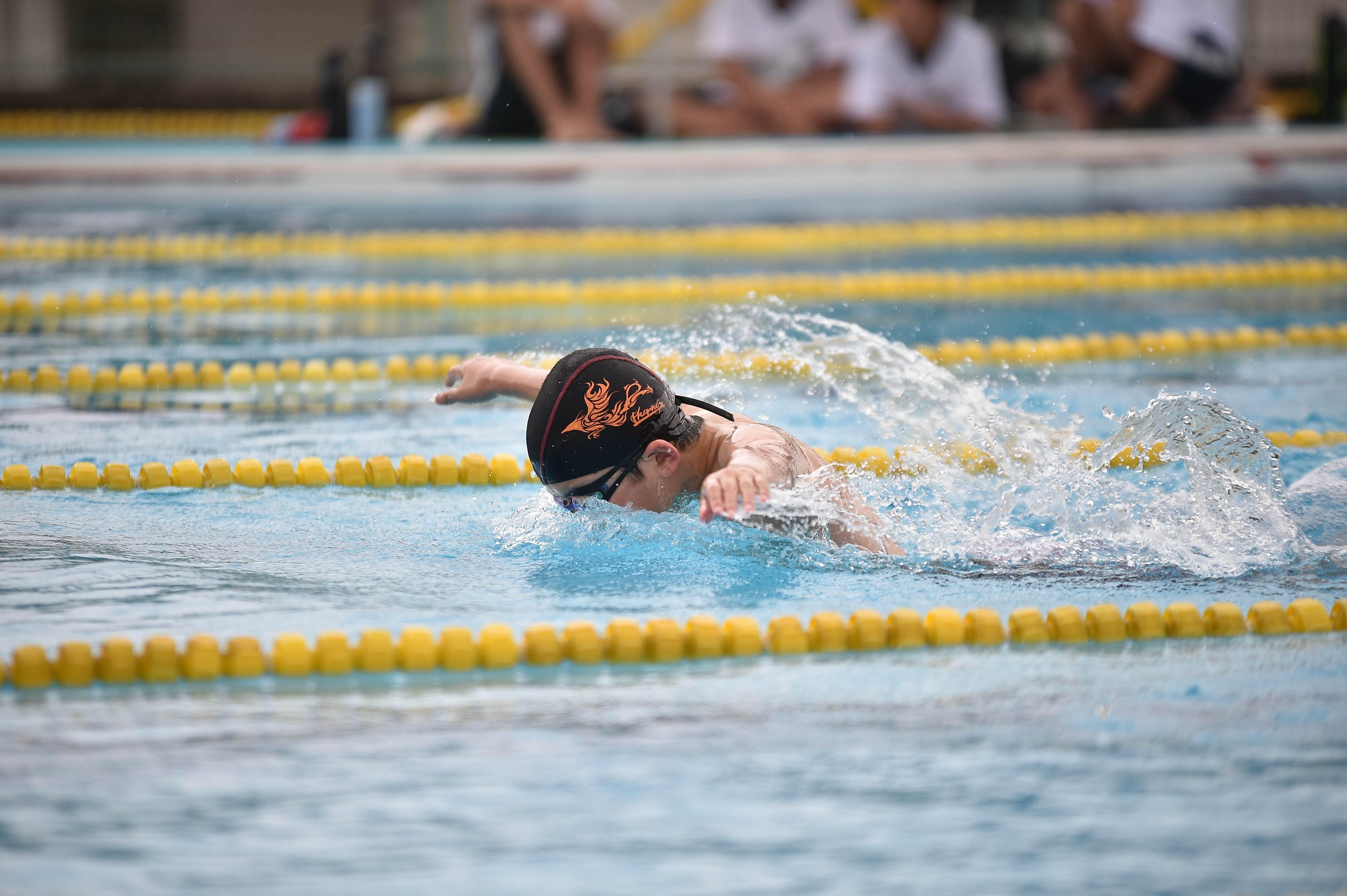 水泳 (85)