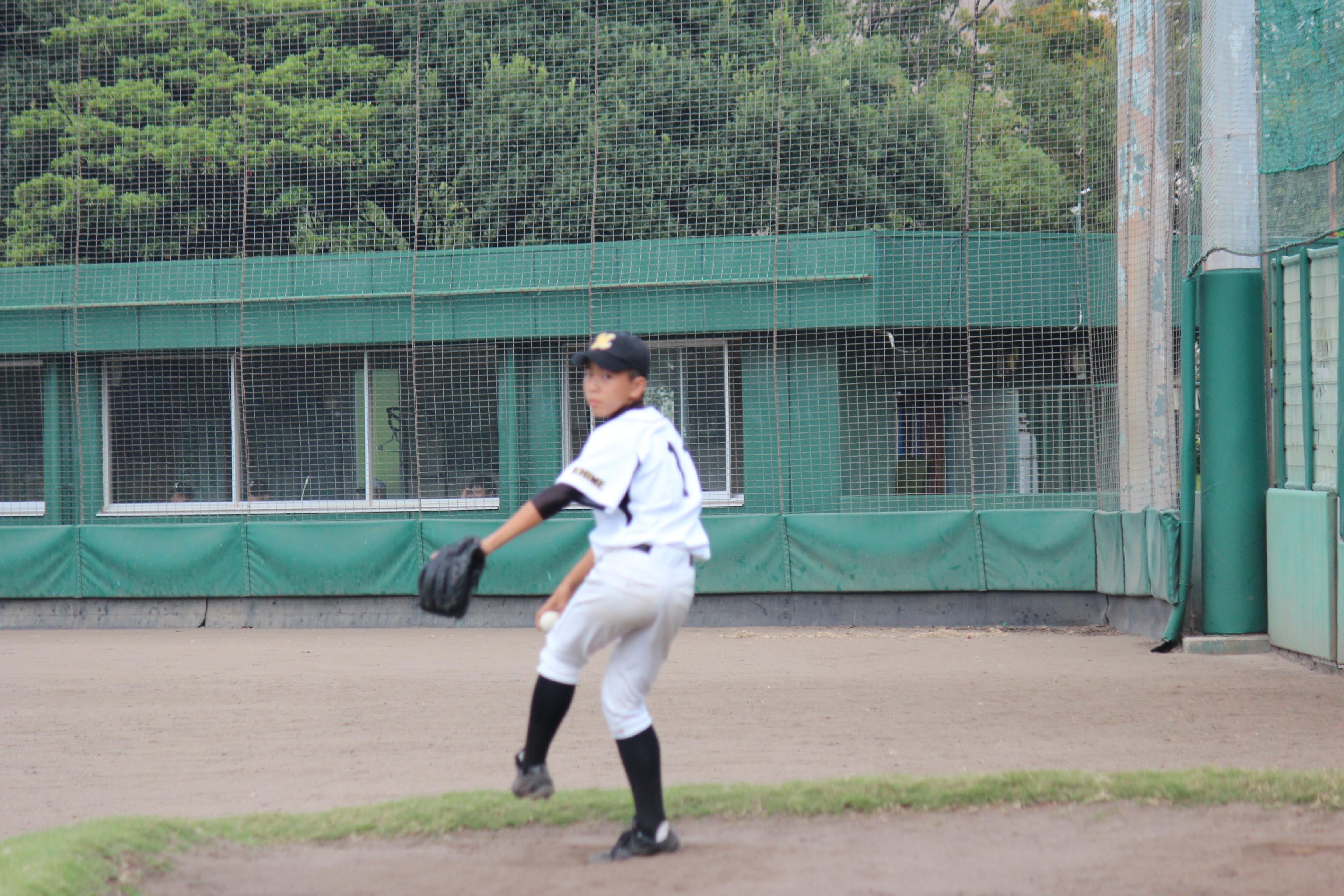 野球 (478)