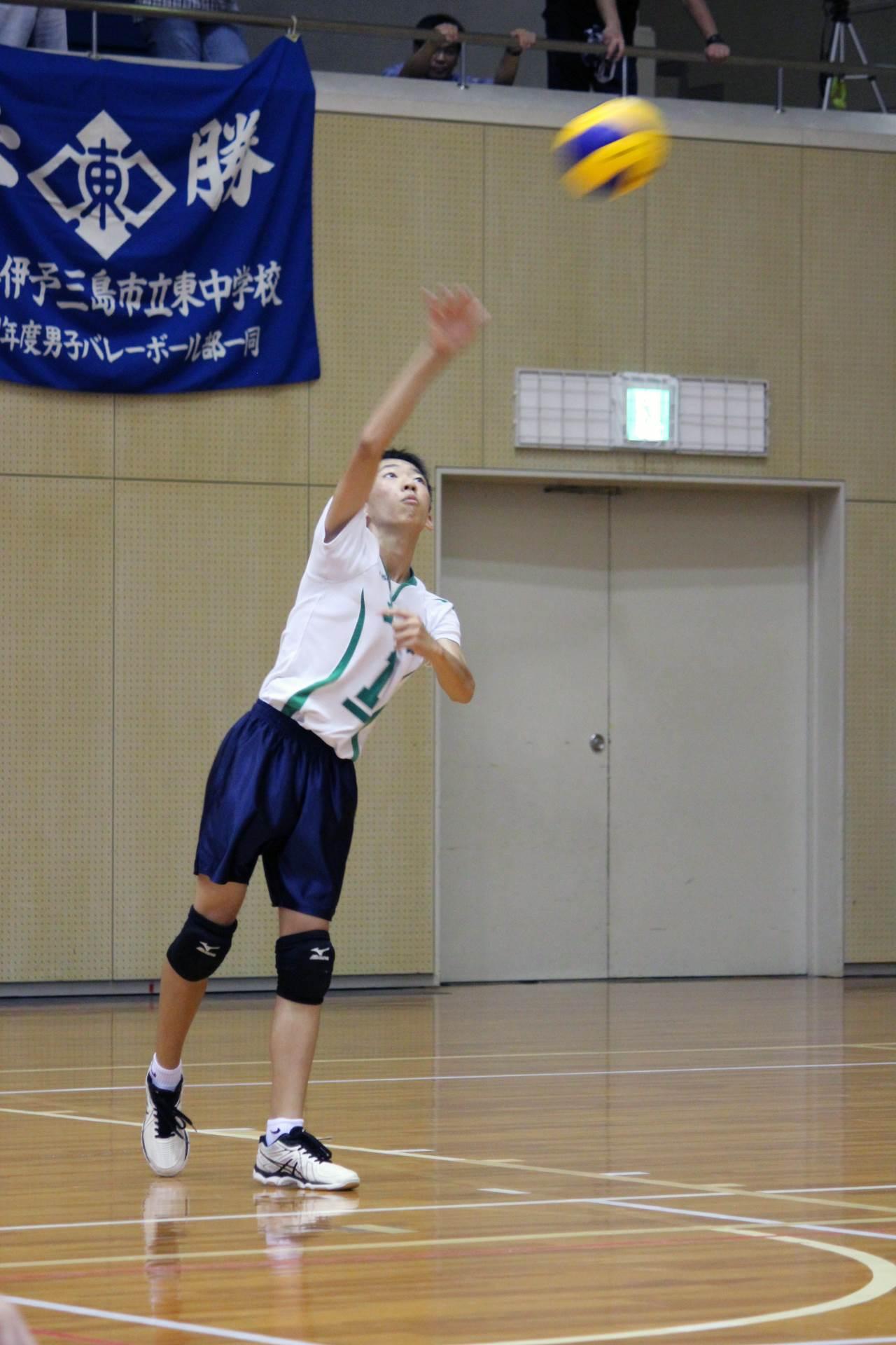 volleyball (12)