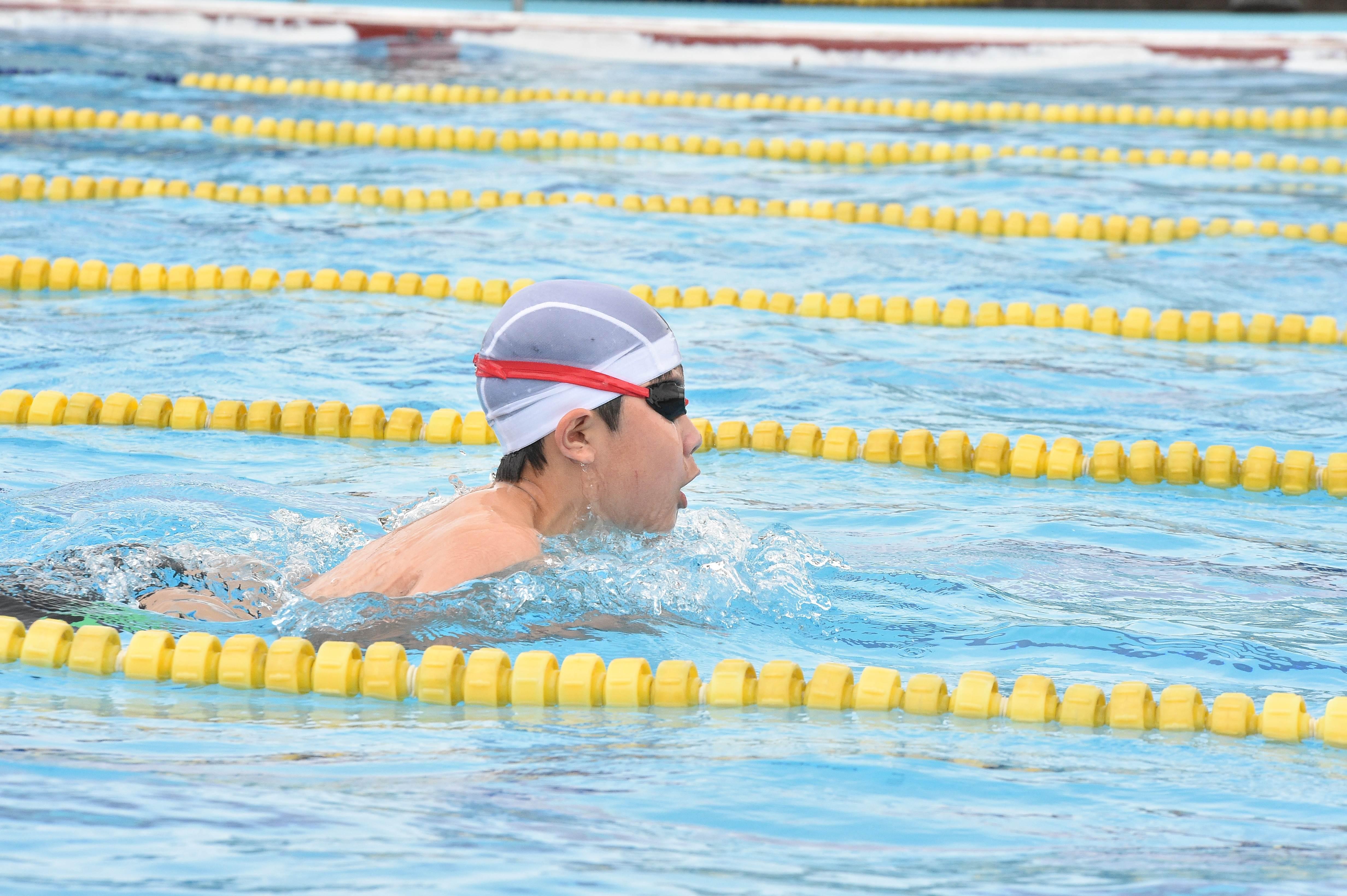 水泳 (120)