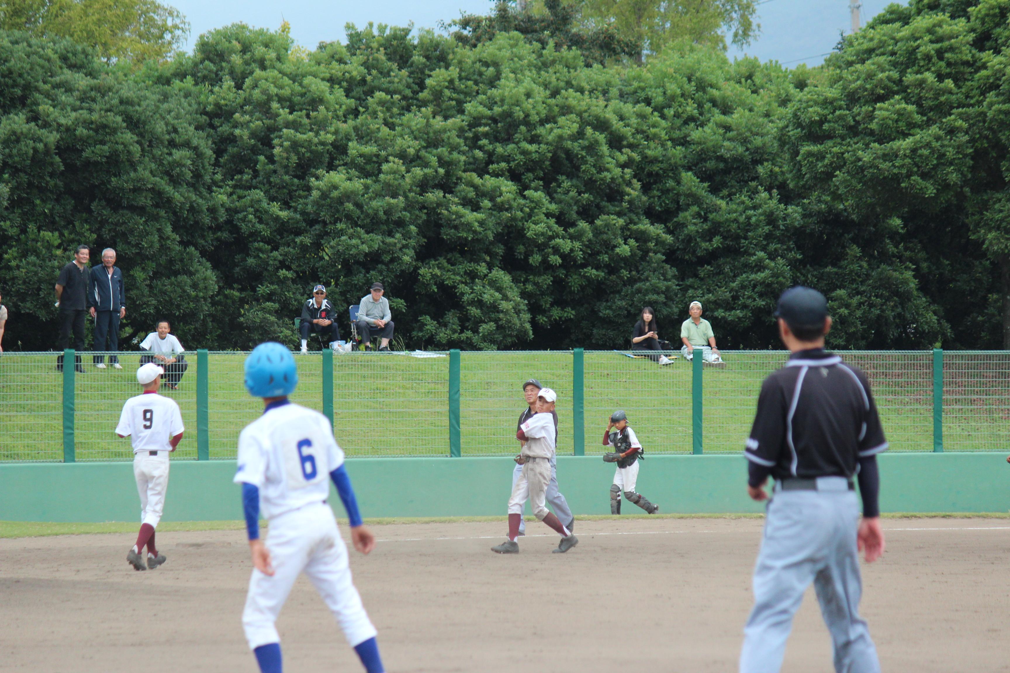 野球 (316)
