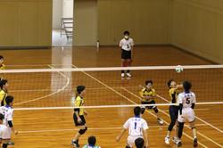 バレーボール (517)