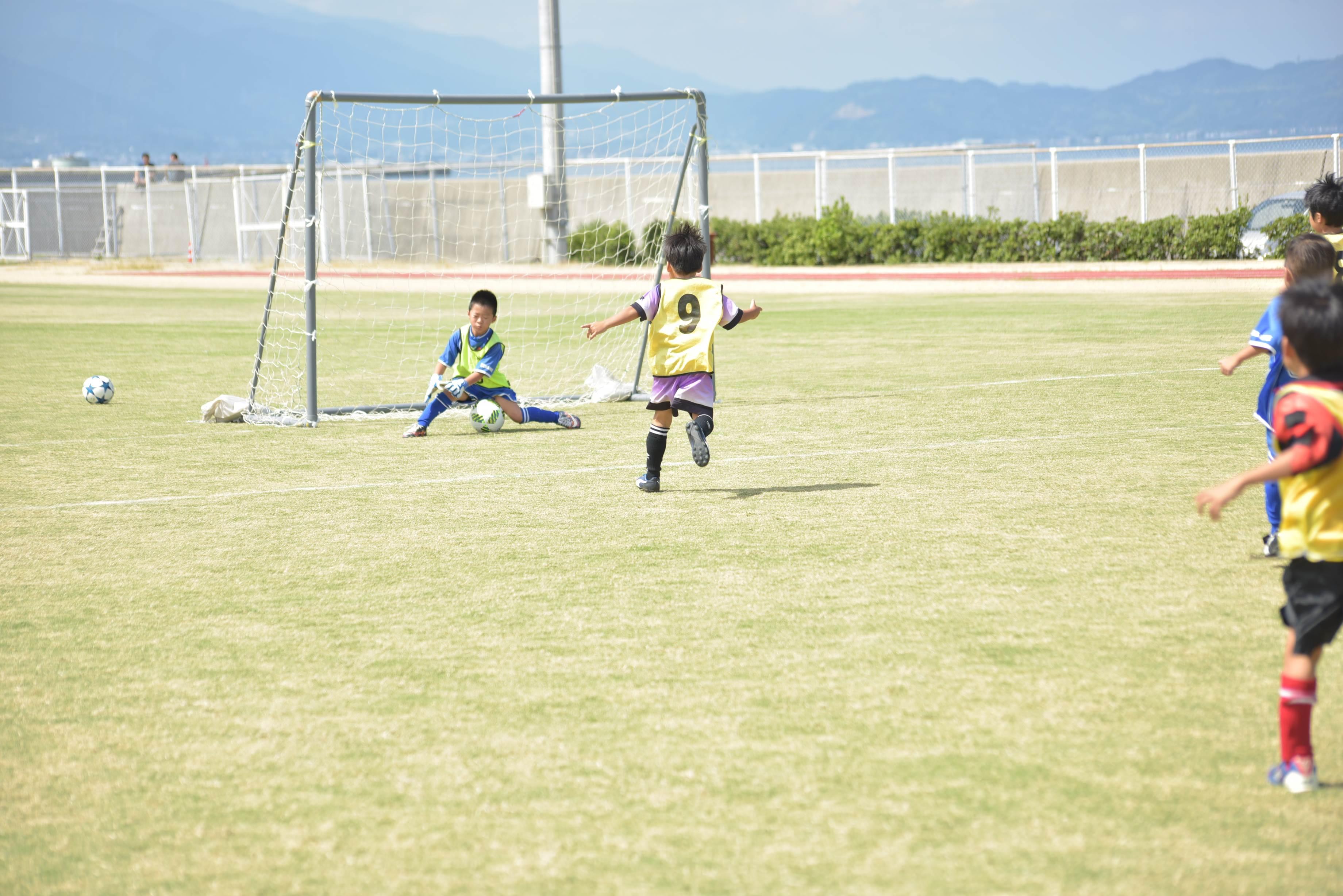 mini_soccer (603)