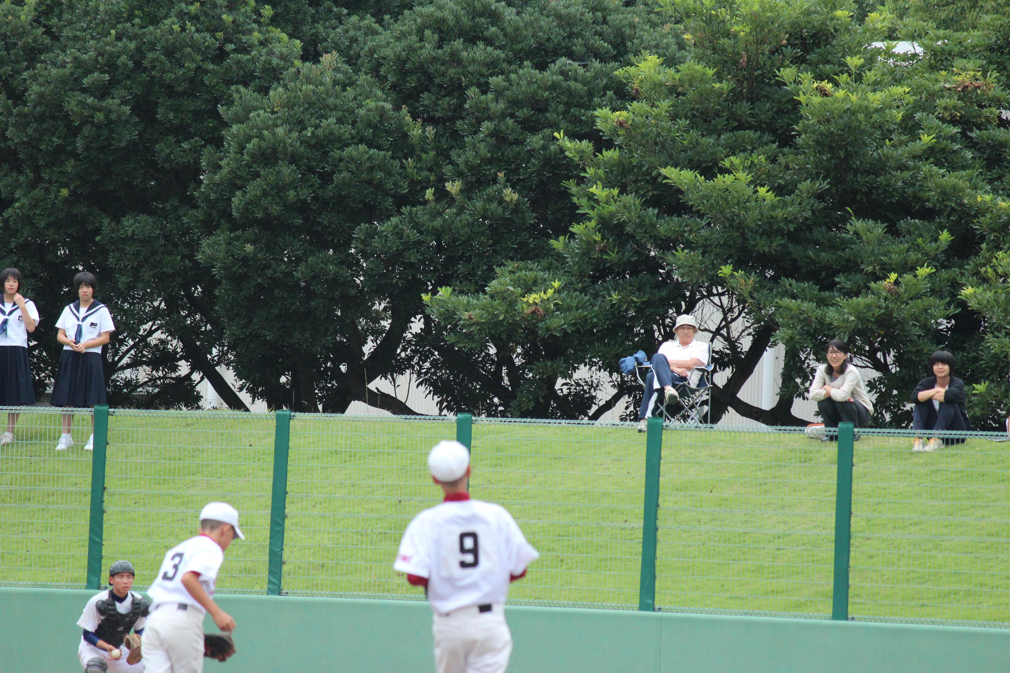 野球 (232)
