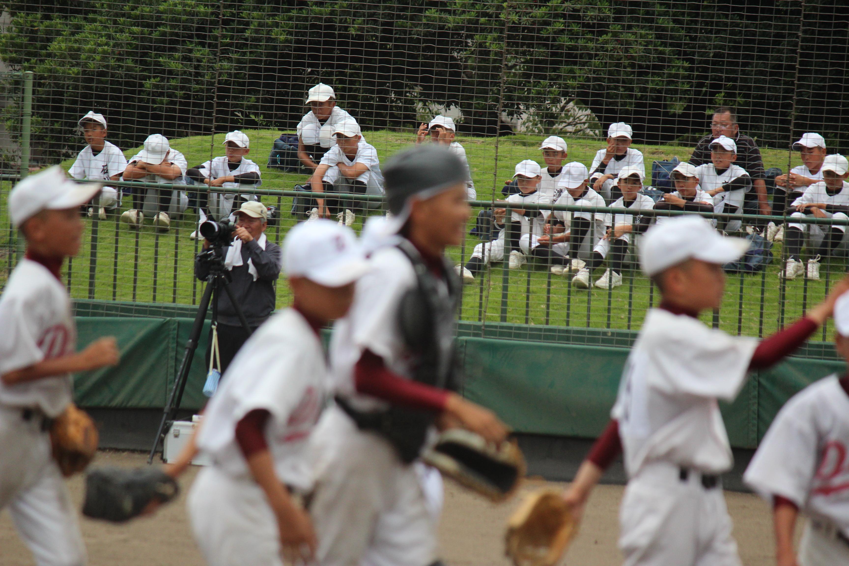 野球 (243)