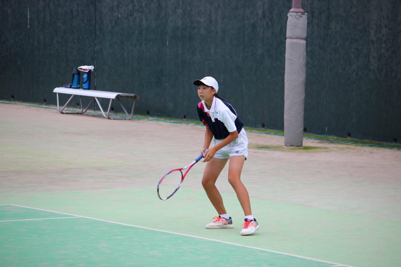ソフトテニス (331)