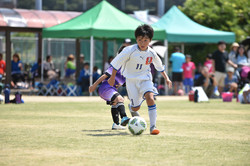 mini_soccer (505)