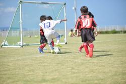 mini_soccer (329)