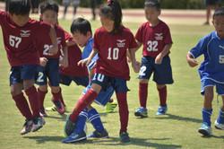 mini_soccer (686)